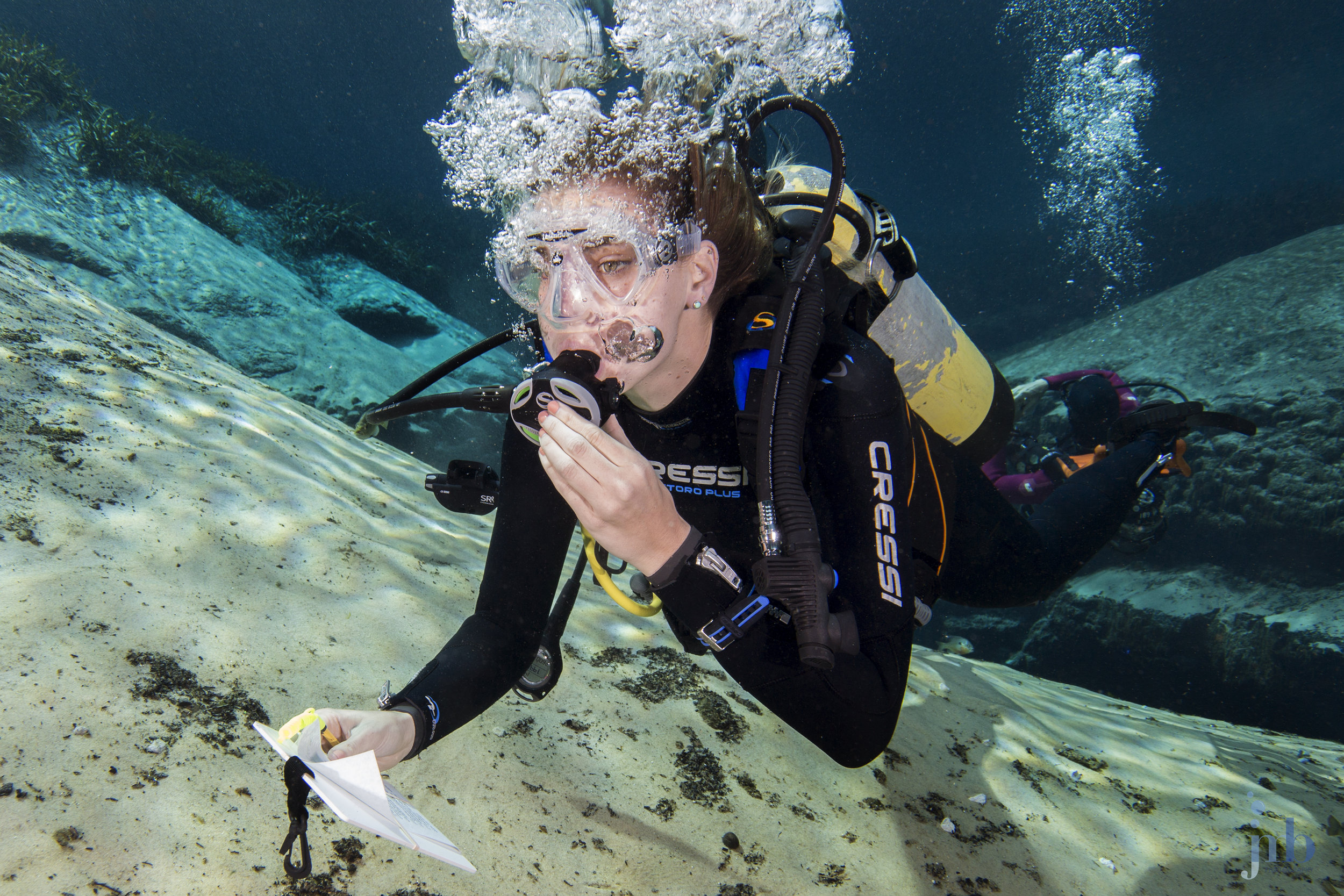 Scuba Diving Reg: Behind-the-Scenes