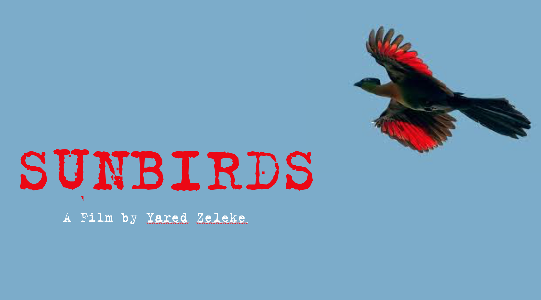 Sunbirds - A feature film in development produced by Truth Aid and directed by Yared Zeleke. This project is being supported by the San Francisco Film Society.