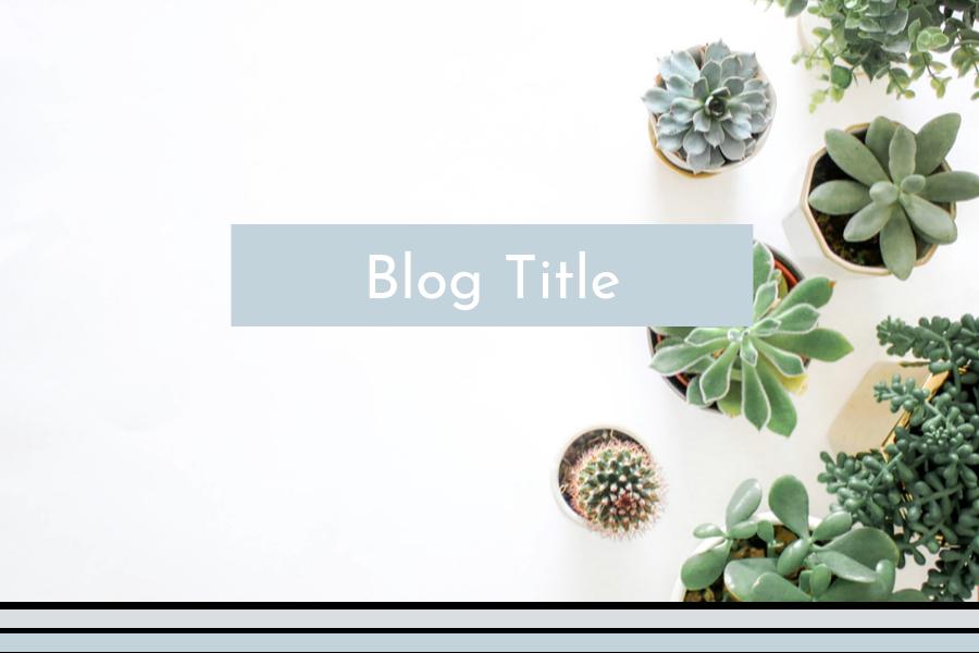 Blog-3.png