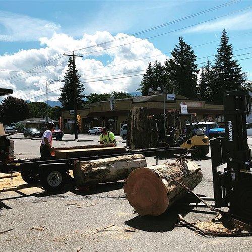 Iron Mountain Sawmilling