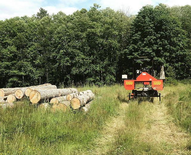 Portable Sawmill Rental >> Iron Mountain Sawmilling