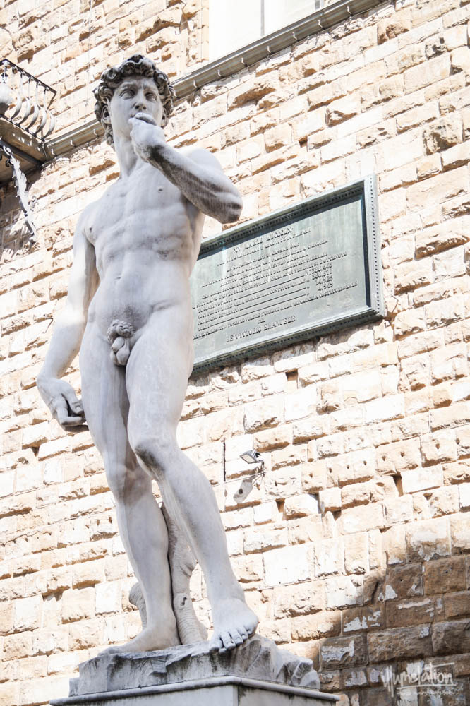 Michelangelo David. Florence, Italy. Replica Piazza Signoria.