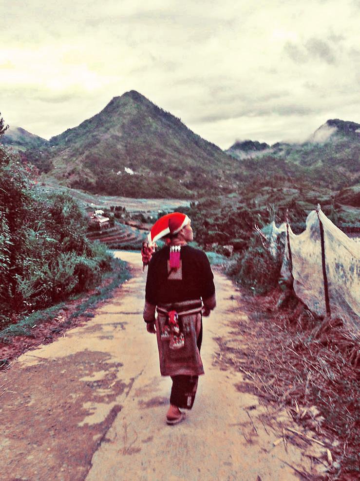 beplay3体育官方下载Red Dao Hilltribe,范,越南萨帕山脉。