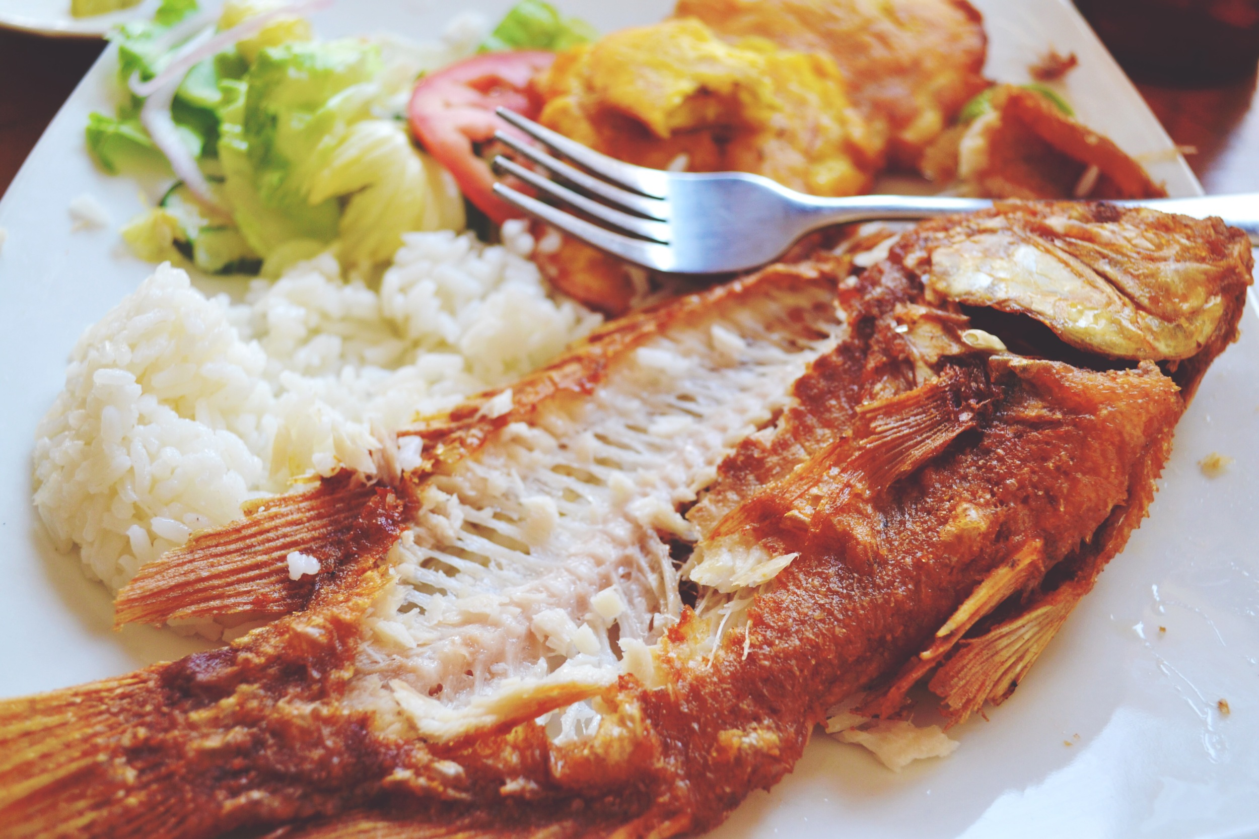 Fish Meal at Cartagena, Colombia - Katerina Jeng, Scratch the List - Illumelation