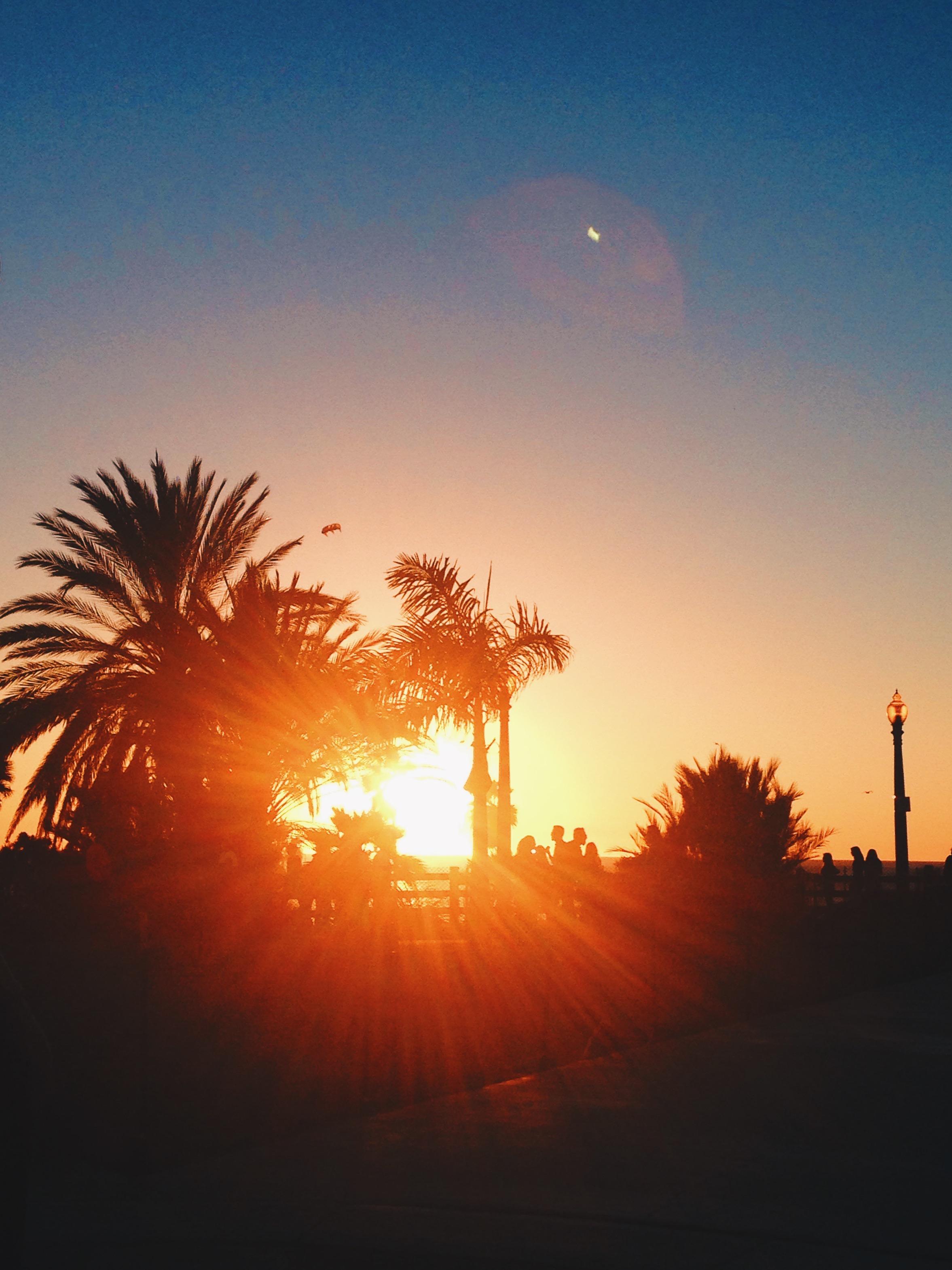 Los Angeles, California - Santa Monica Boulevard Sunset - illumelation