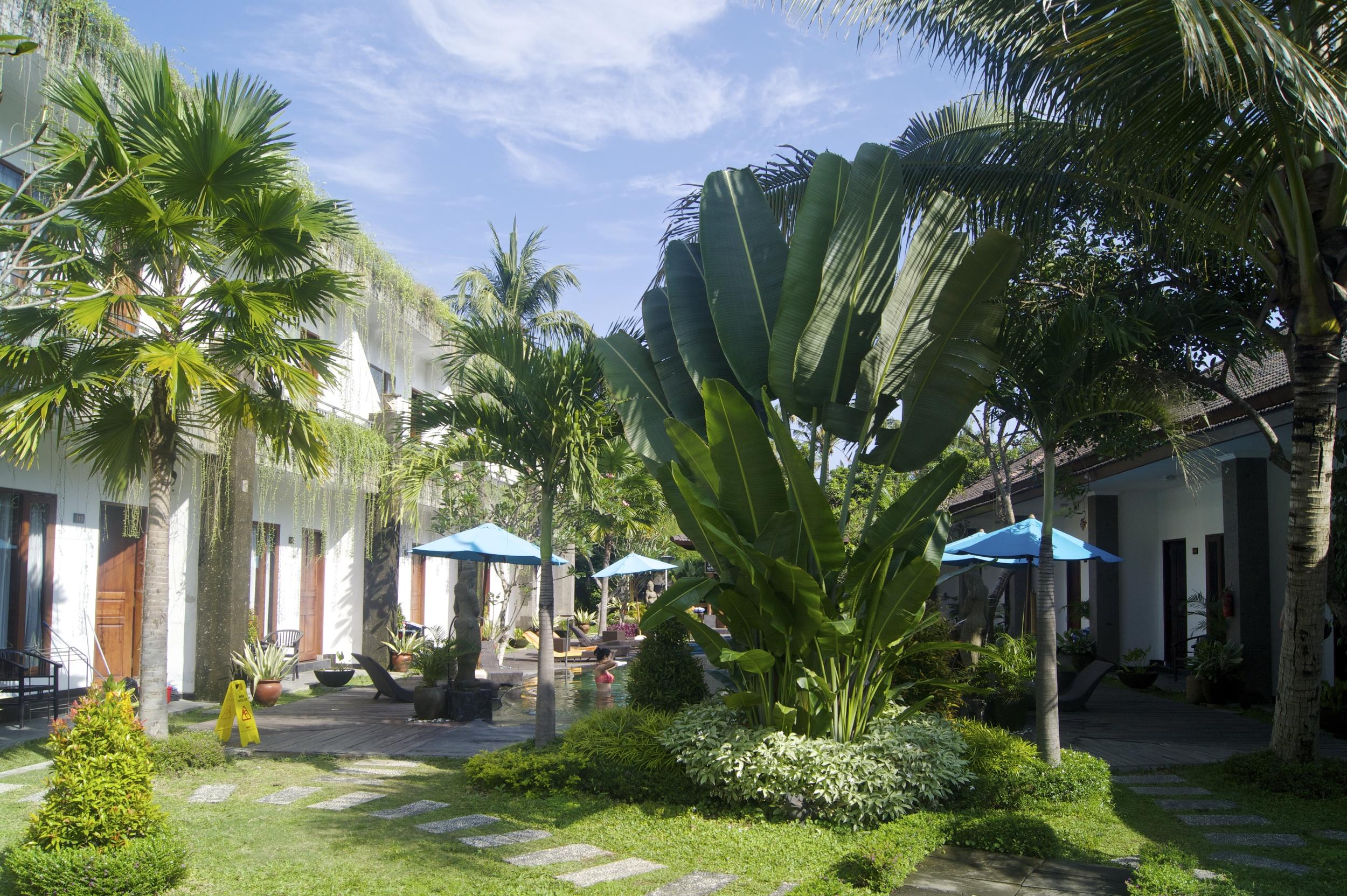 乌布拉亚酒店-游泳池和花园-巴厘岛乌布-酒店评论-illumelation.combeplay3体育官方下载