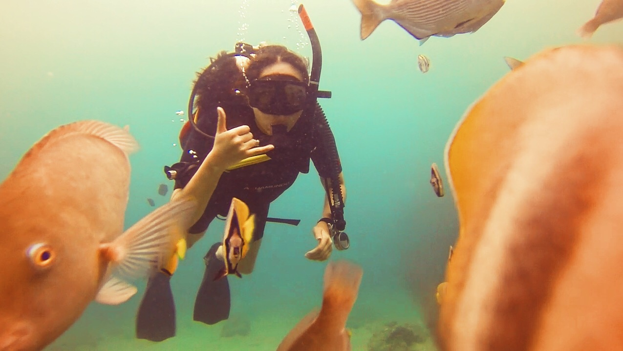 Mel - female scuba diver giving Shaka hand sign underwater surrounded by fish in Batangas Province - Luzon, Philippines