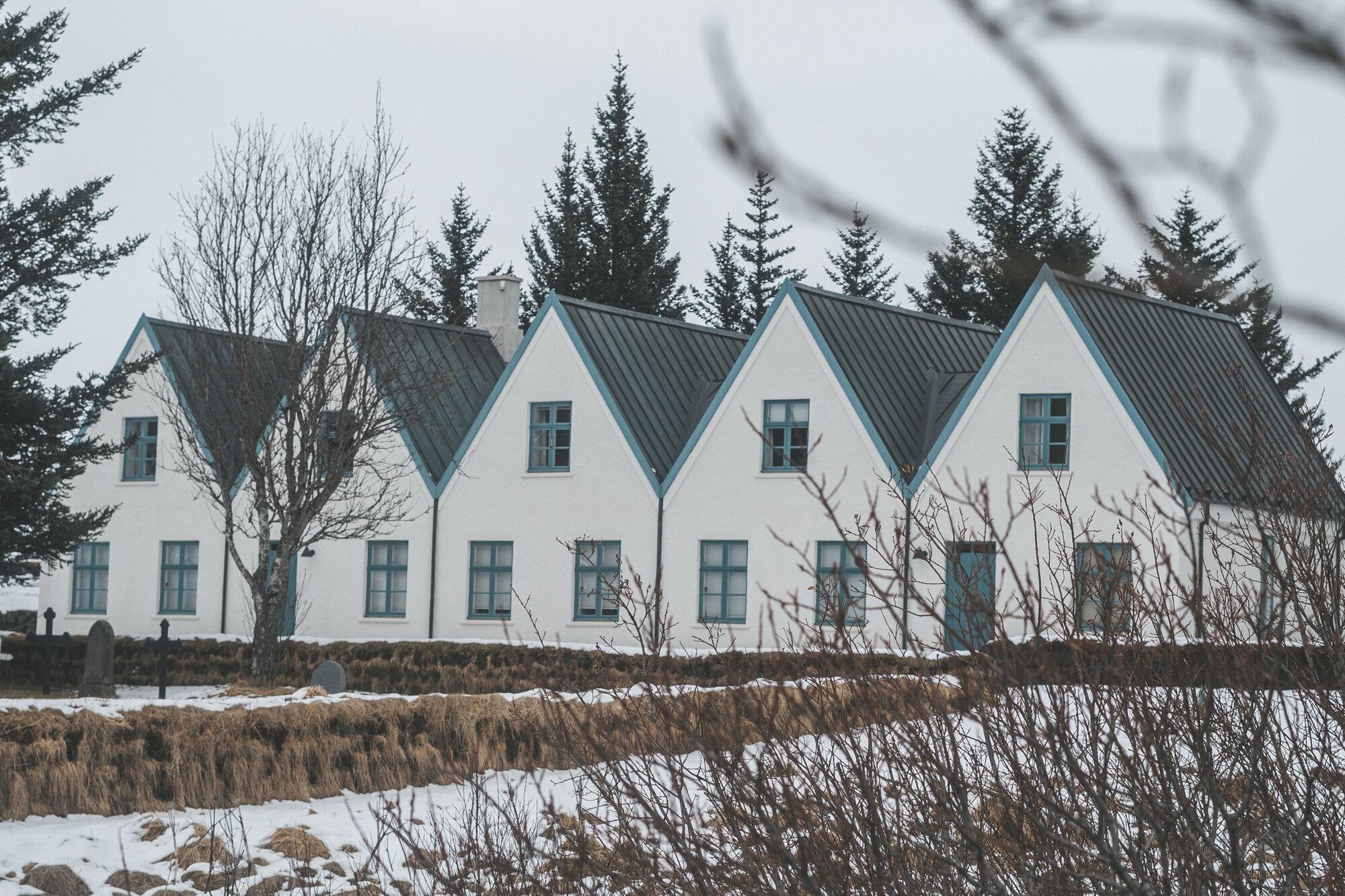 Thingvellir国家公园的一排冰岛房屋,前景是树木和树枝