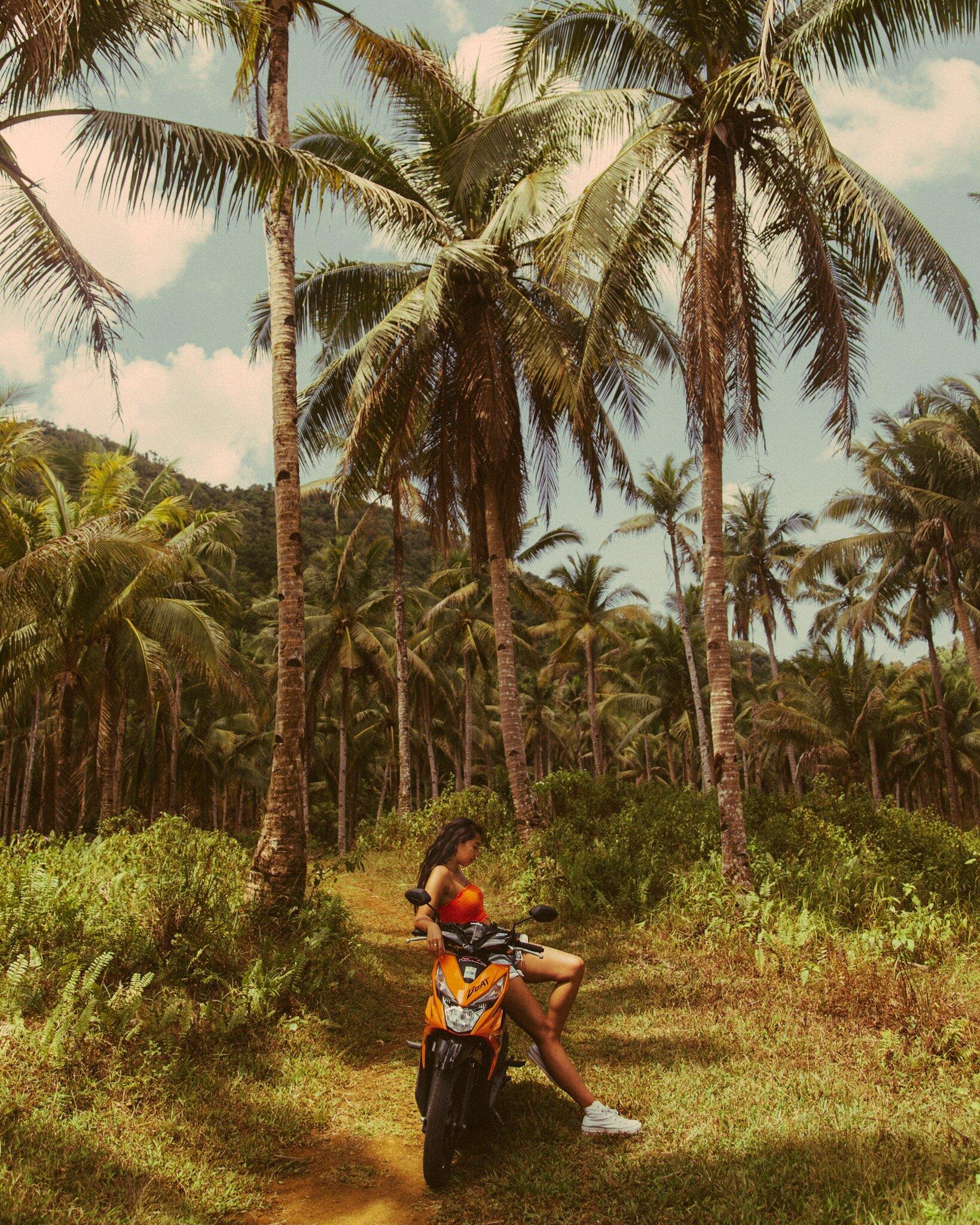 Siargao-palm-trees-motorbike-beplay3体育官方下载illumelation.JPG
