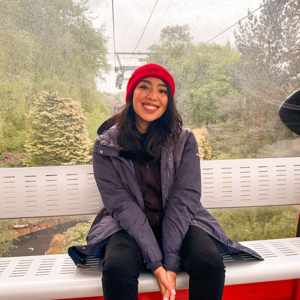 在奥尔顿塔的空中缆车上微笑的女孩