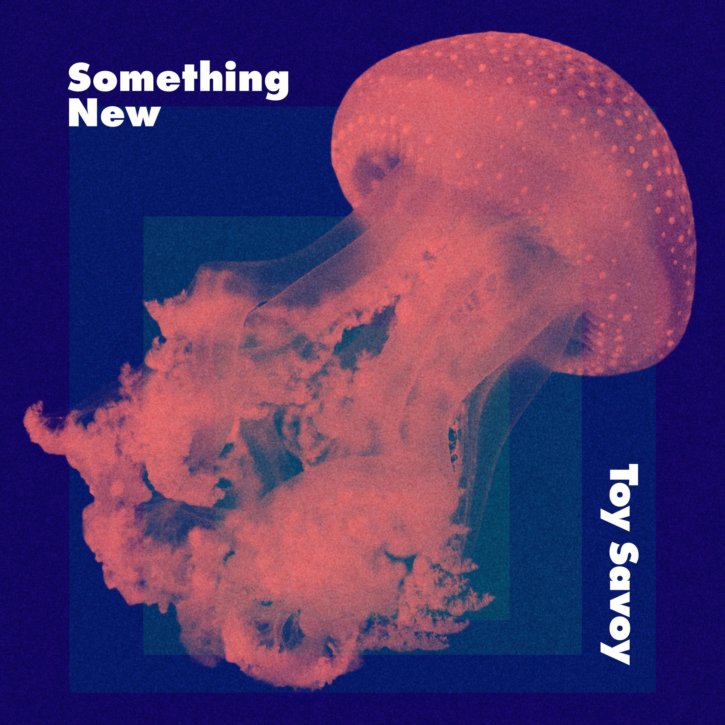 Toy_Savoy-Something_New(litt-komprimert).jpg
