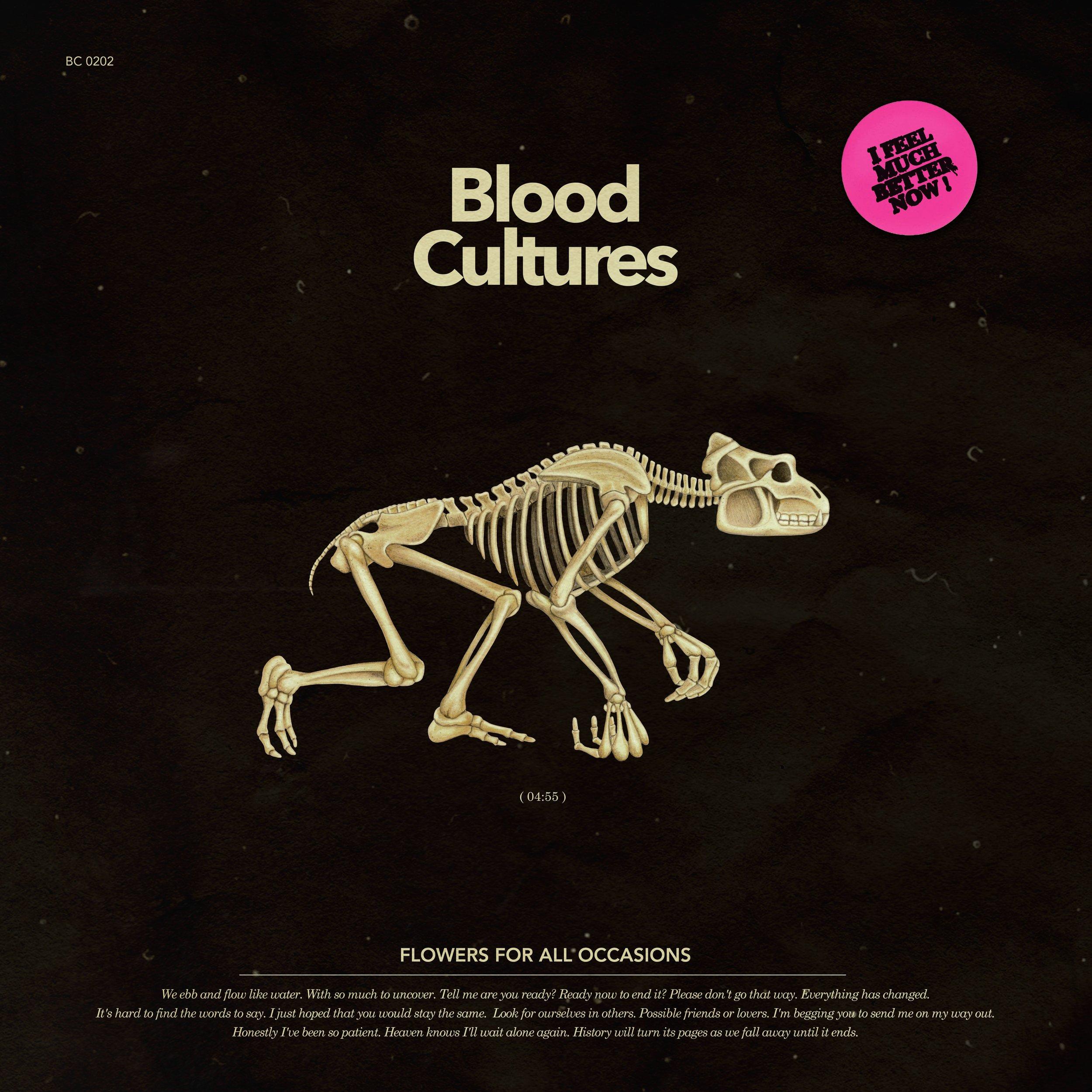 blood cultures.jpg