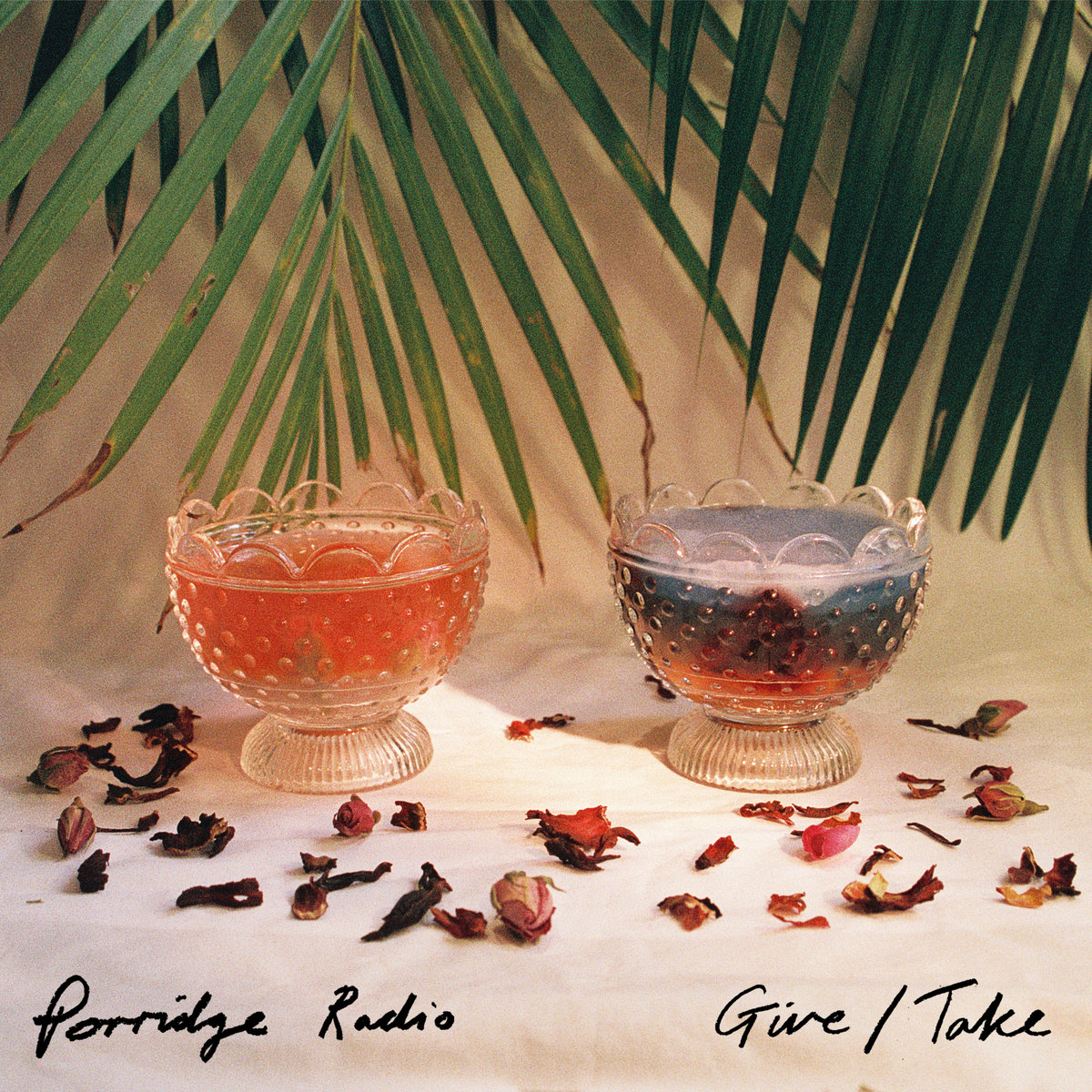 porridge radio.jpg