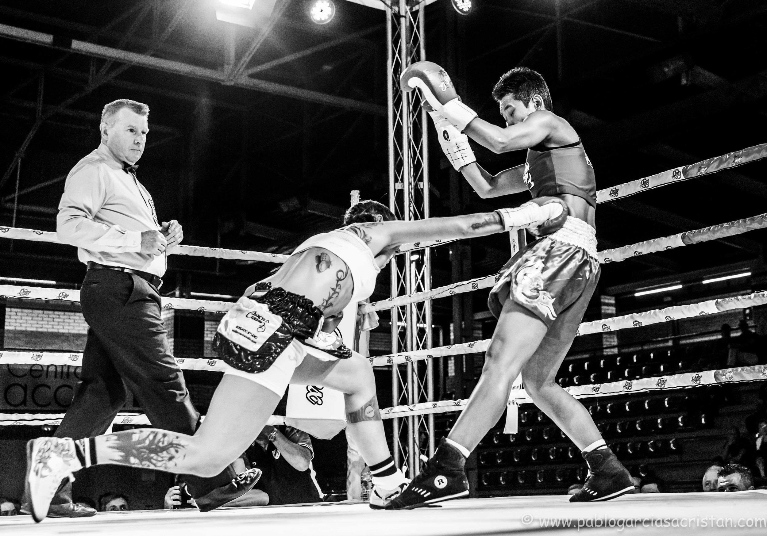 boxeo blanco y negro_13.jpg