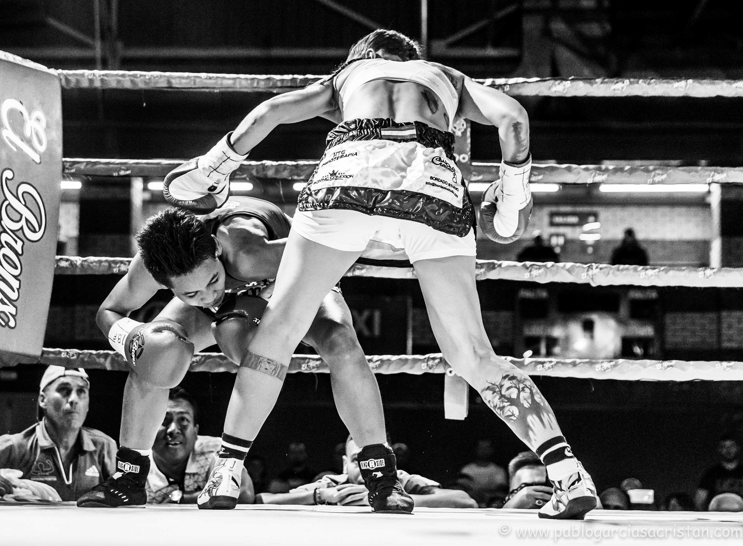 boxeo blanco y negro_16.jpg