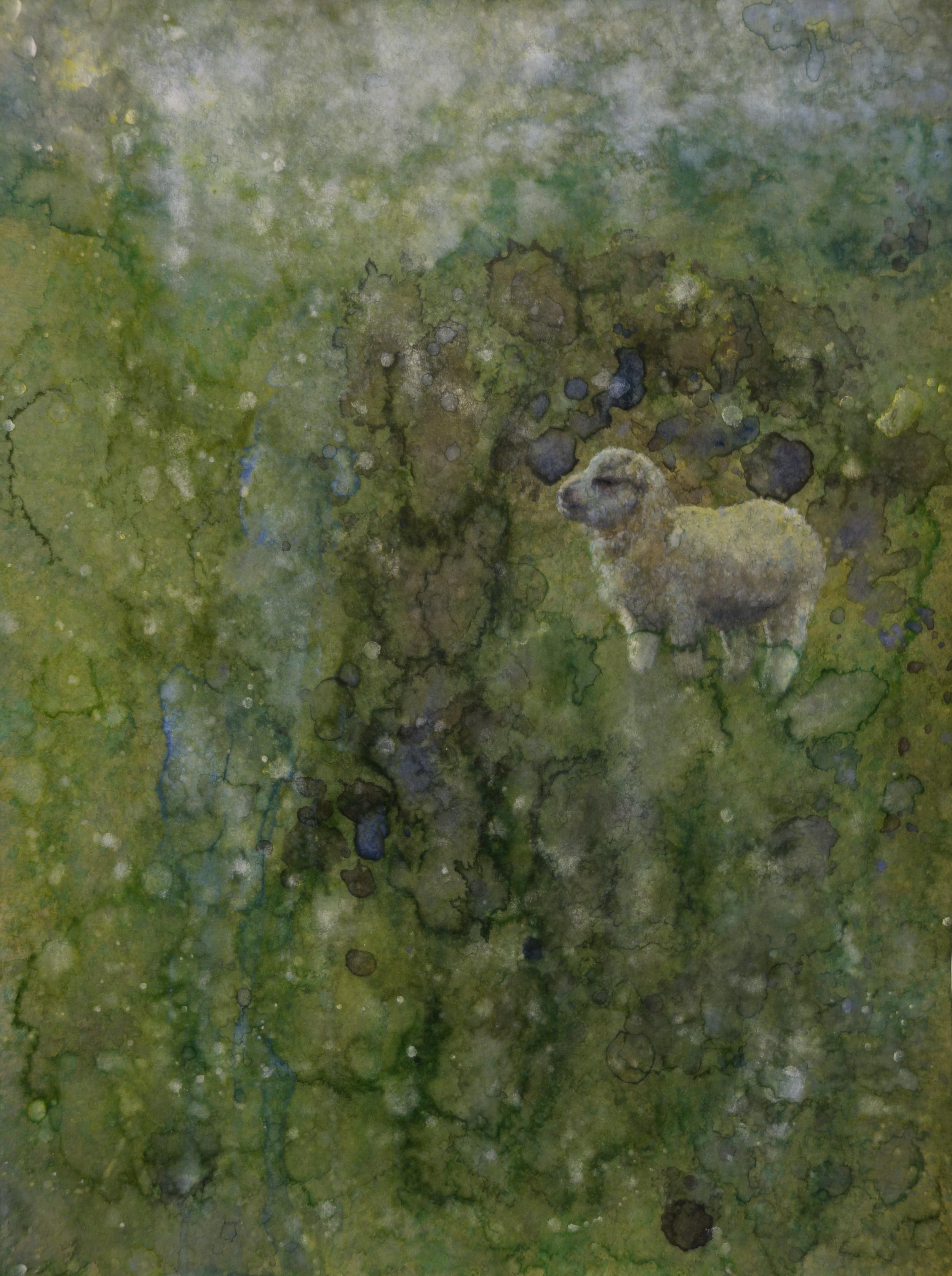 Confident Lamb