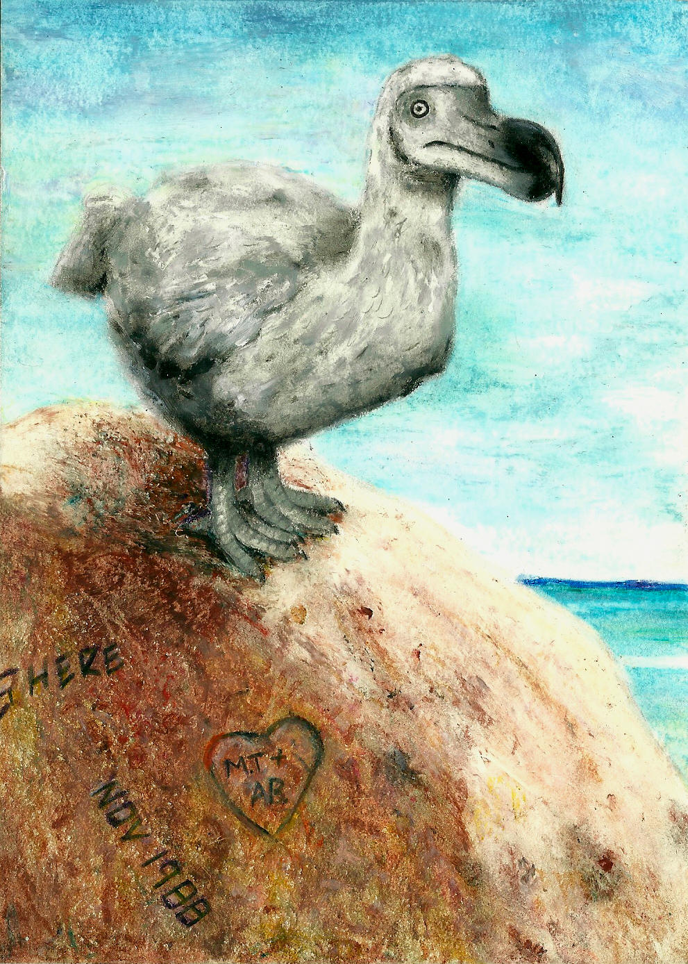 Dodo on Tourist Rock