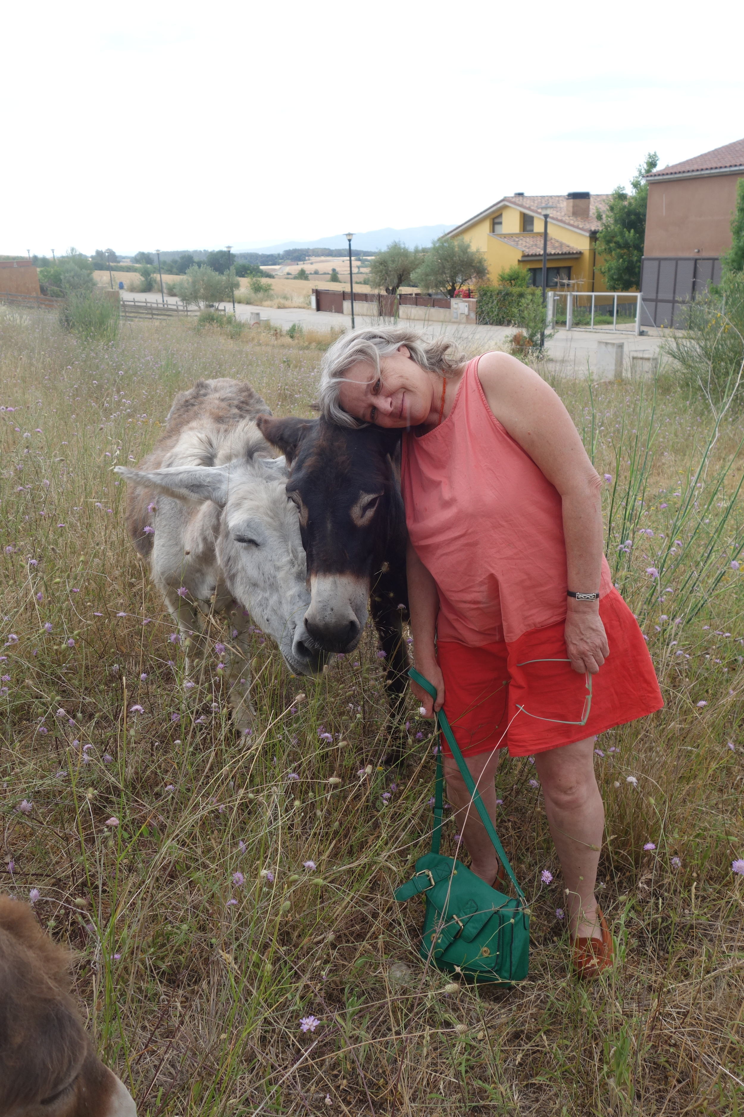 Clara with two of the donkeys.