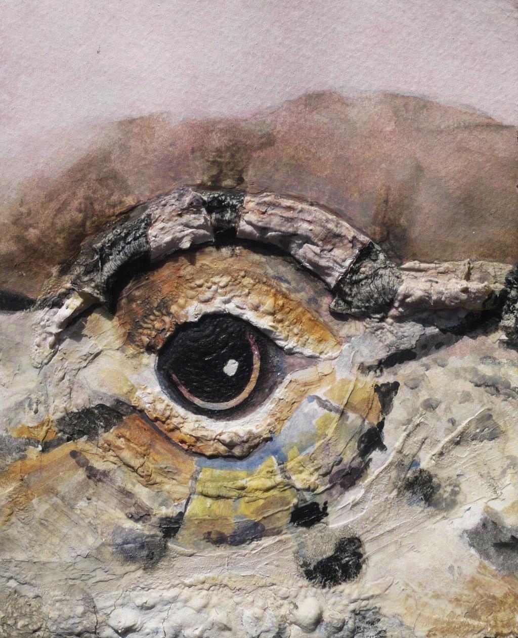 Anole Eye