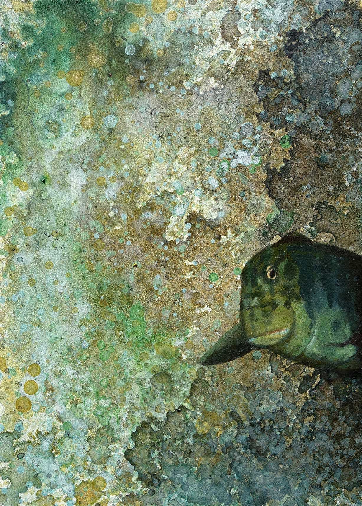 Shelby Prindaville Redlip Blenny Stage Left Painting.jpg