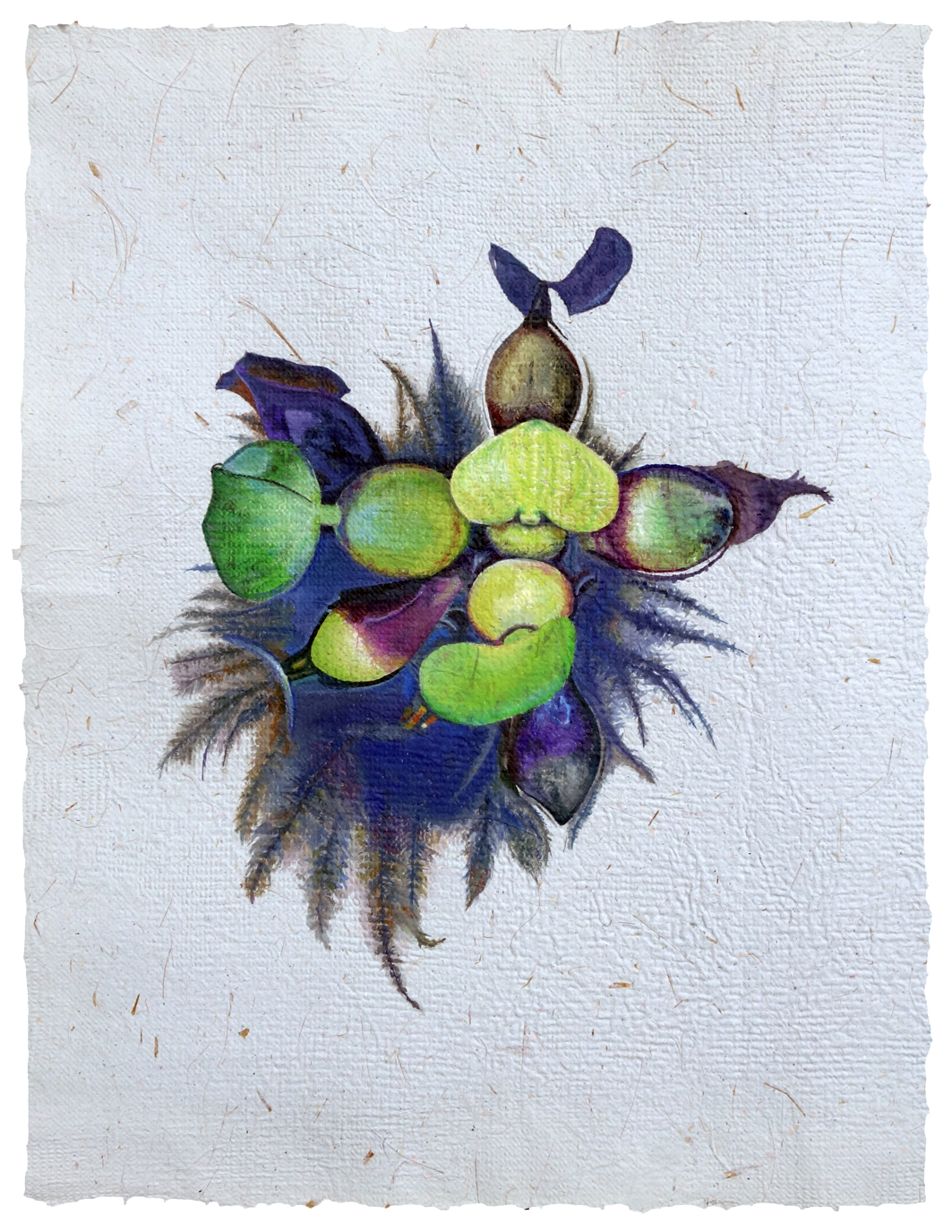 Water Hyacinth 1c.jpg