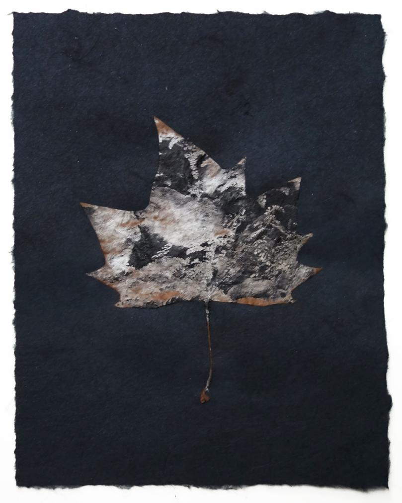 black paper medium leaf 1c.jpg