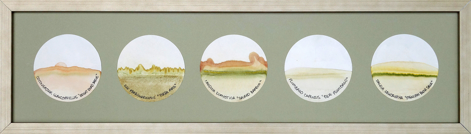 Transmigration Landscapes - Flare c.jpg