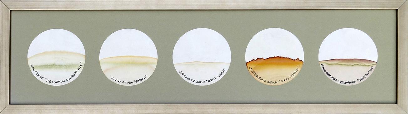 Transmigration Landscapes - Reflective c.jpg
