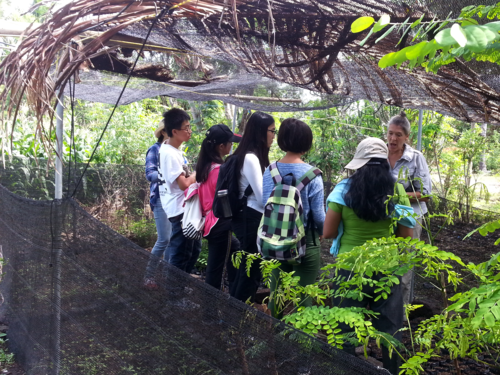 Our Biosphere participants receiving hands-on learning from Sierra, one of Biosphere Bali's on-site facilitators and scientists.