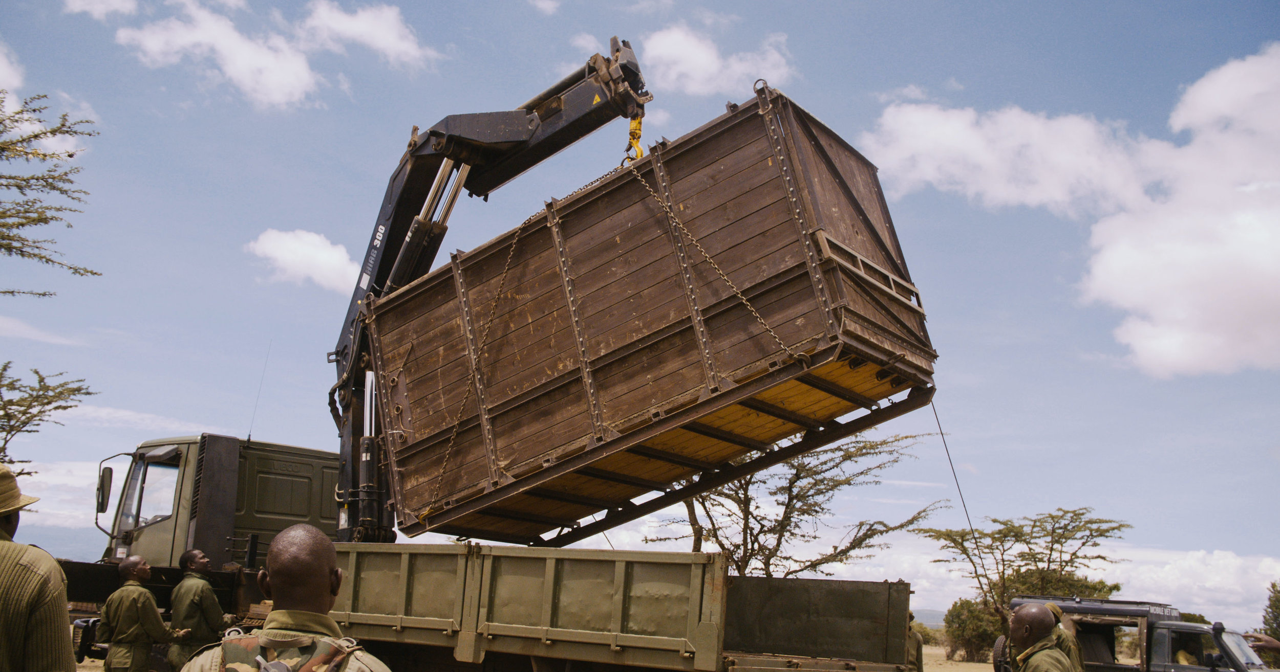 A rhino transfer at Ol Pejeta Conservancy in Kenya. Credit: David Hambridge