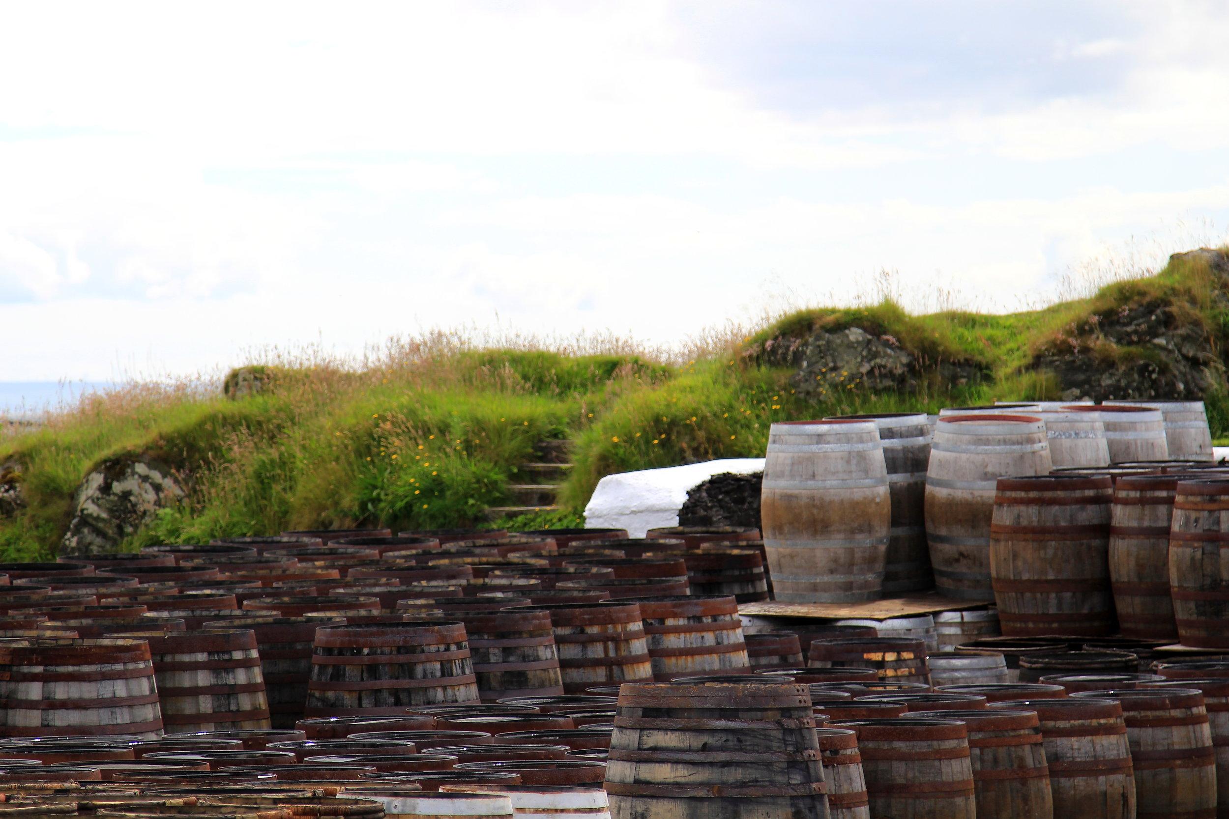 Whiskey Barrels at Ardbeg Distillery