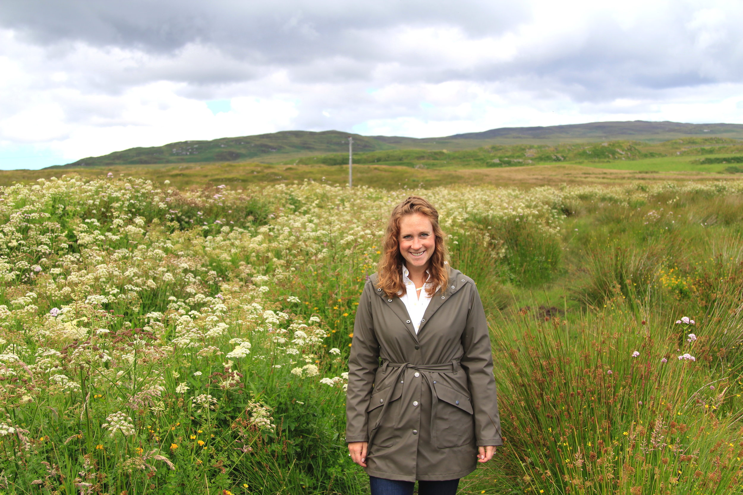 Laphroaig plots, Islay, Scotland