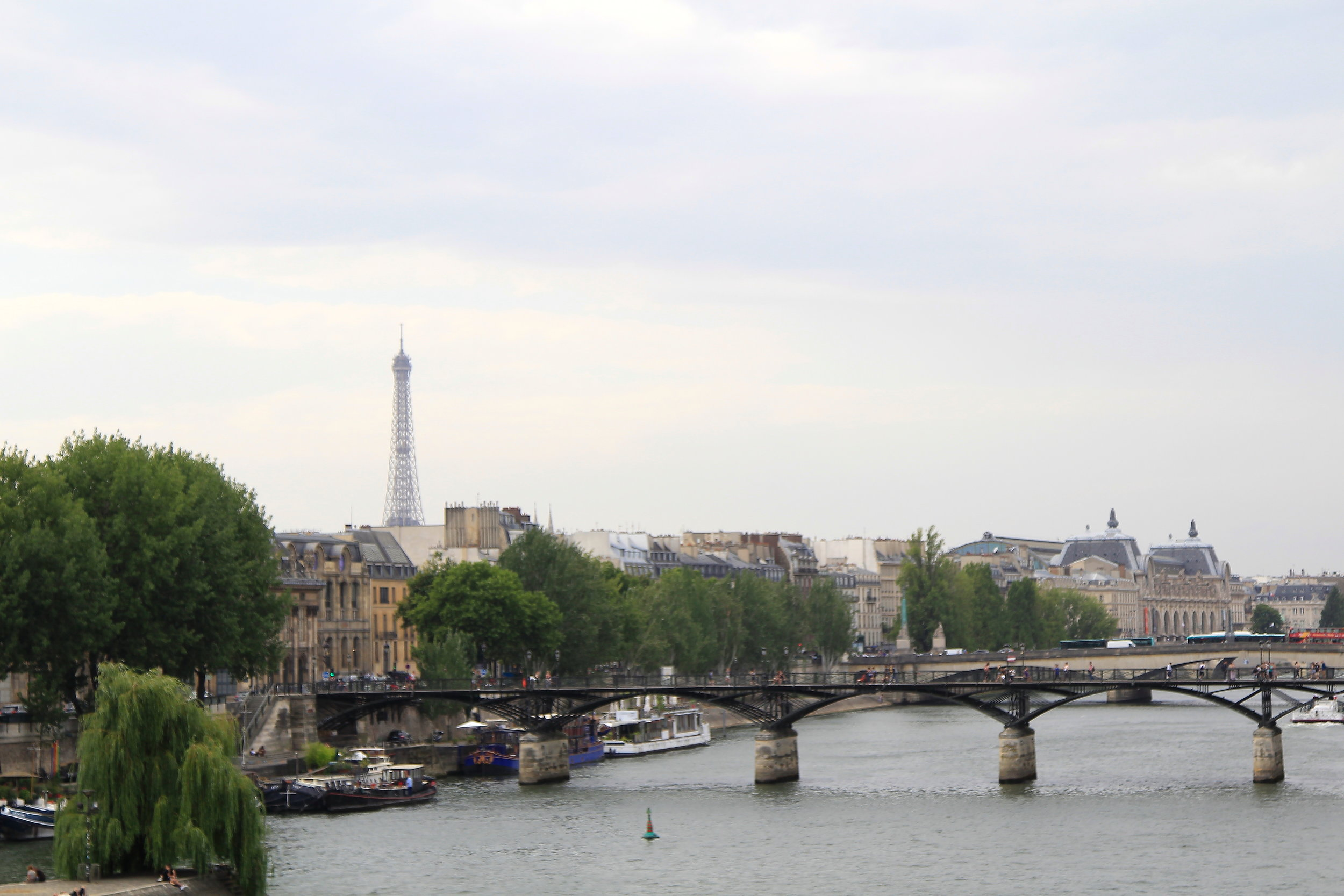 Looking over the Seine River in Paris