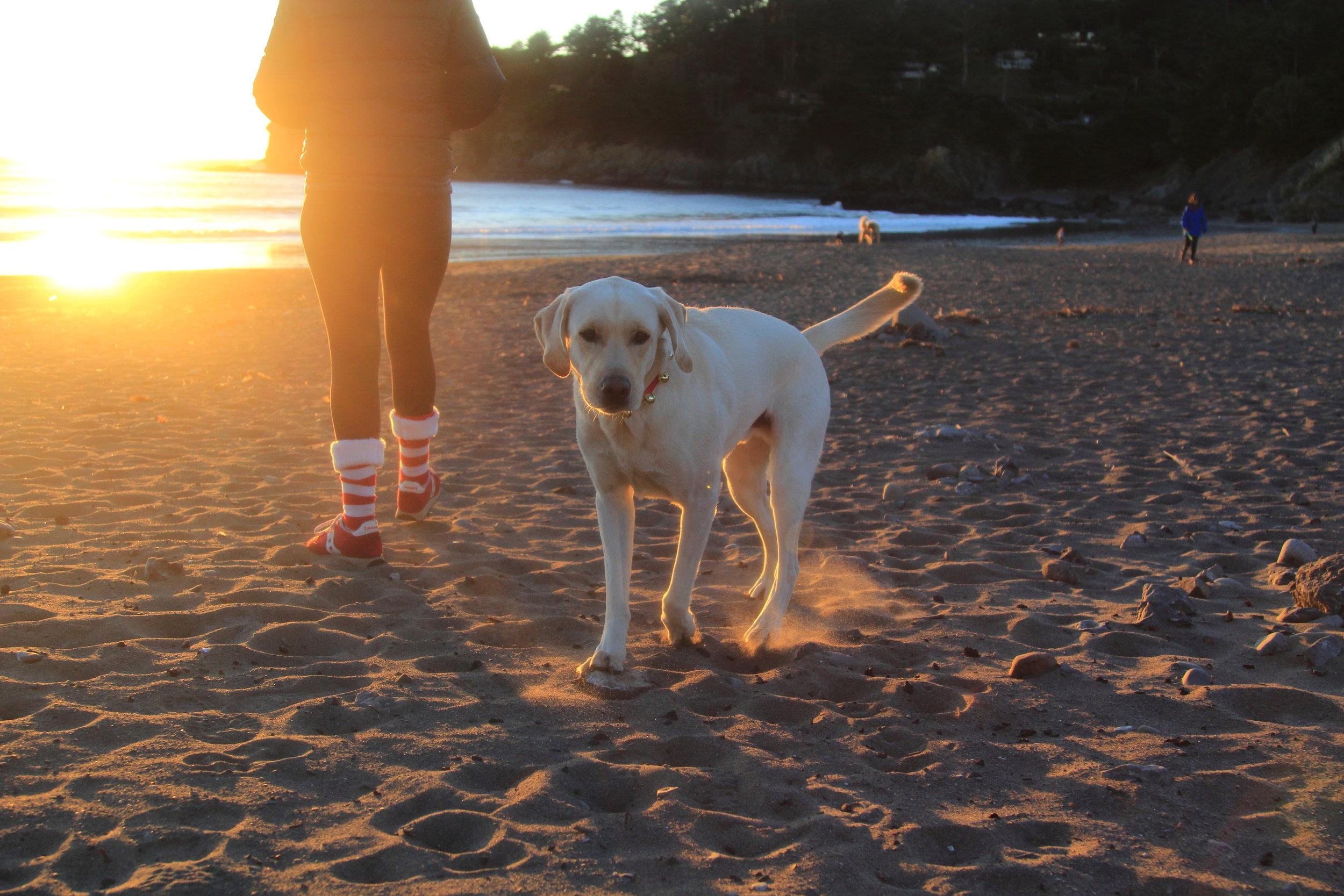 Sunset on Muir Beach