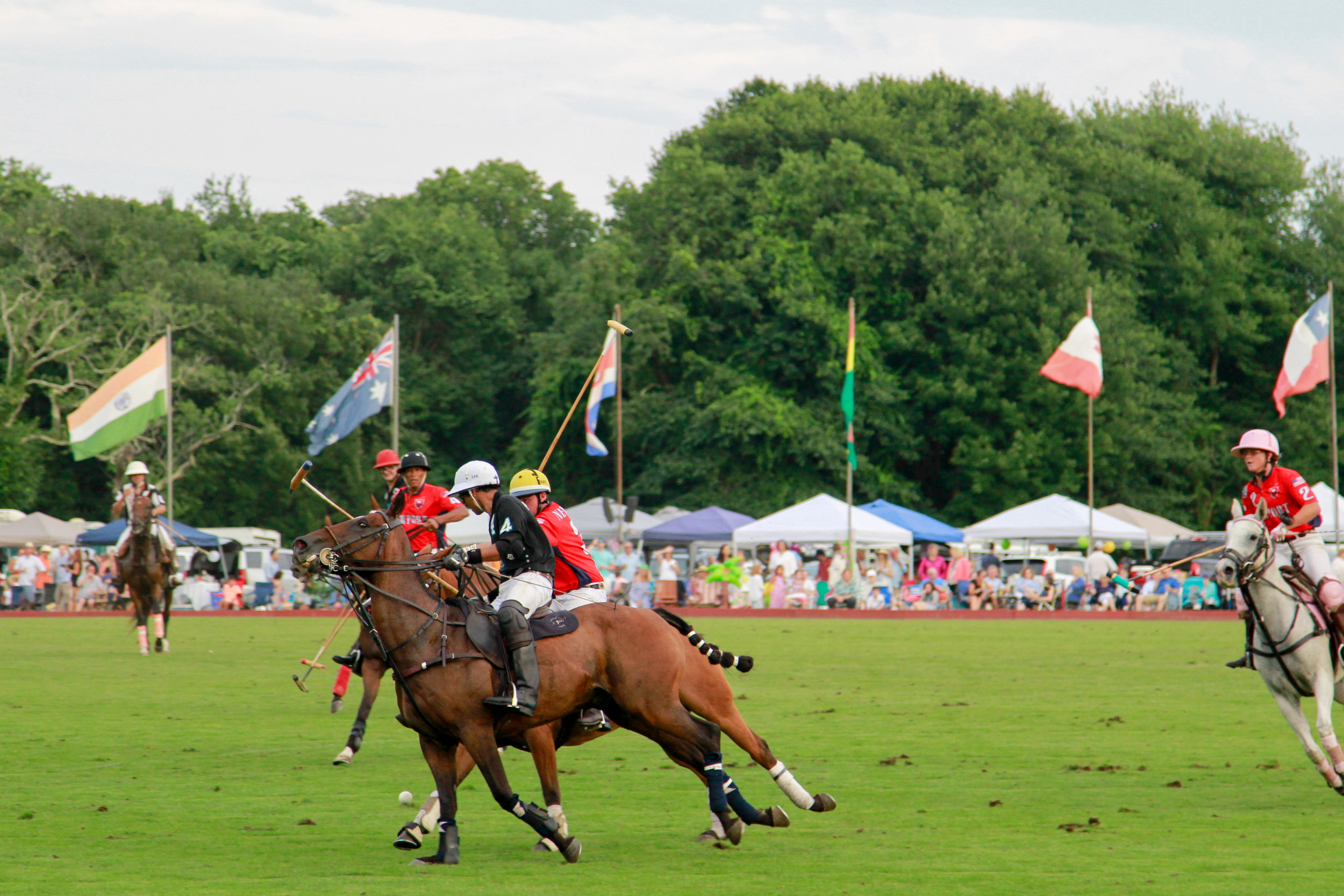 Newport Polo Series - guide to Newport, Rhode Island