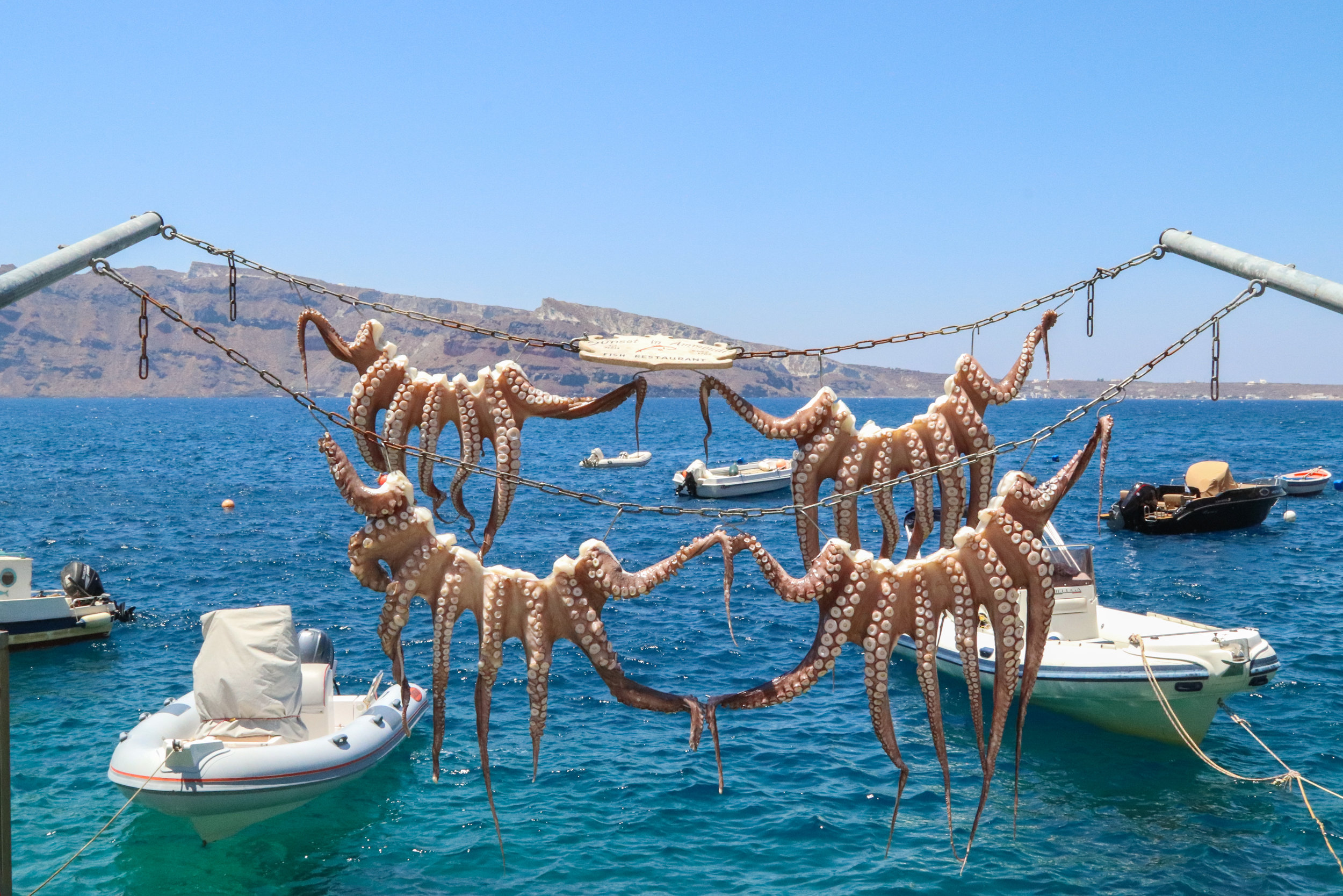 octopus hanging to dry in Ammoudi Bay, Santorini