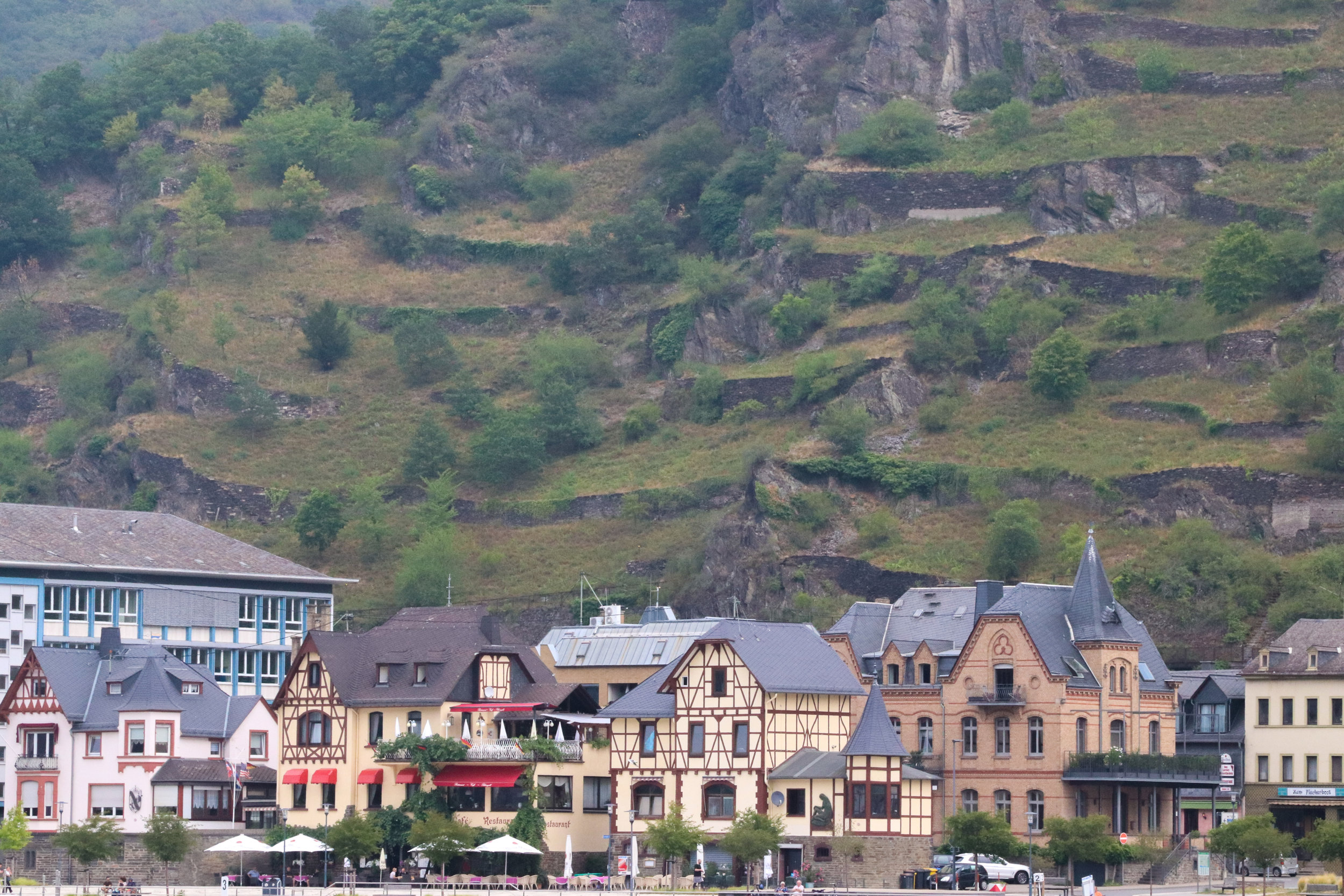 view of quaint German town from the Rhine river cruise