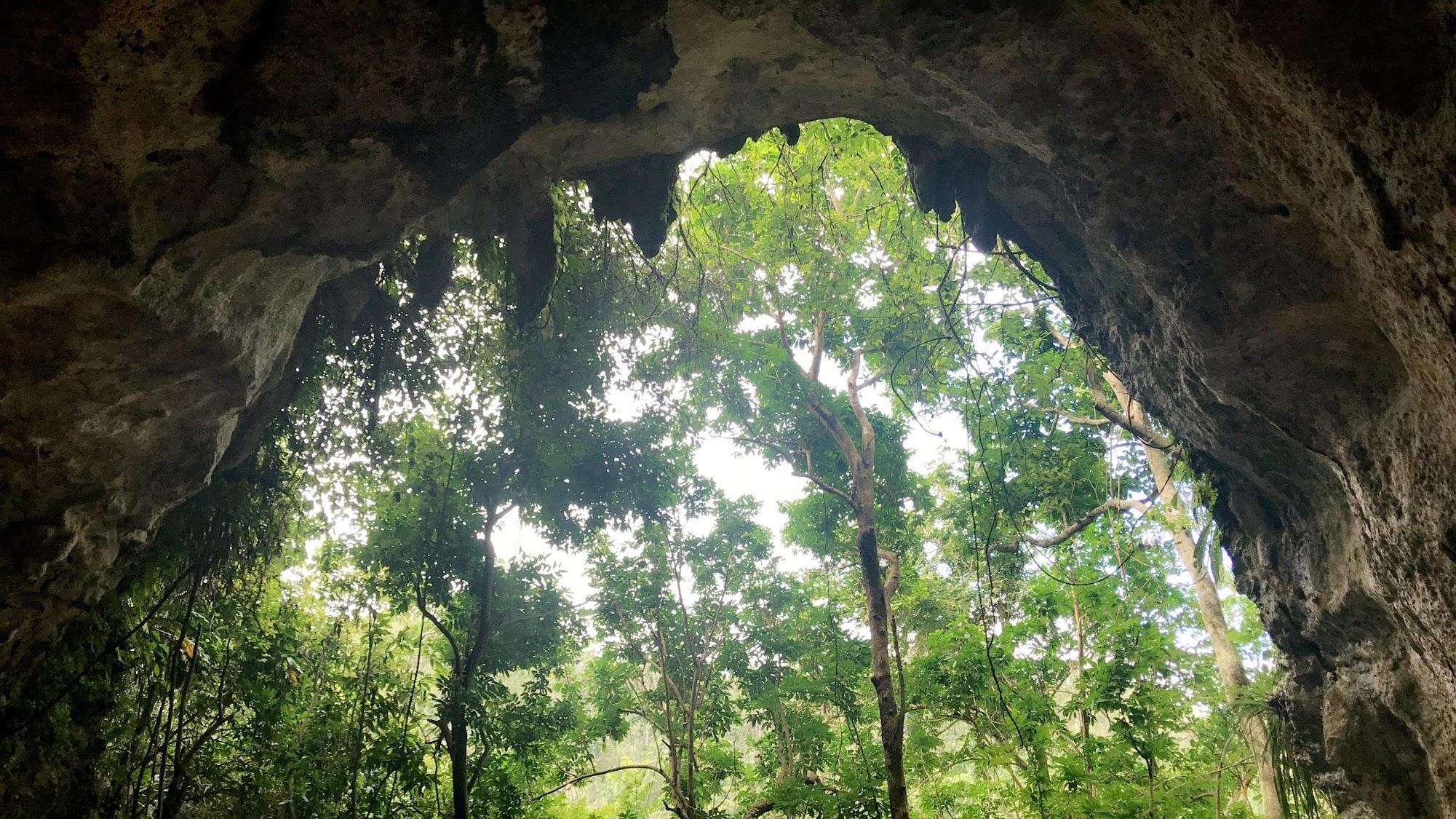 1 cave.jpeg