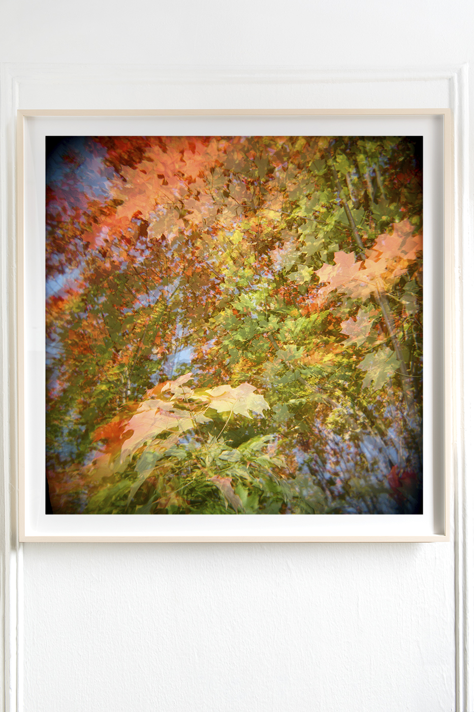 Autumn Leaves Swarthmore