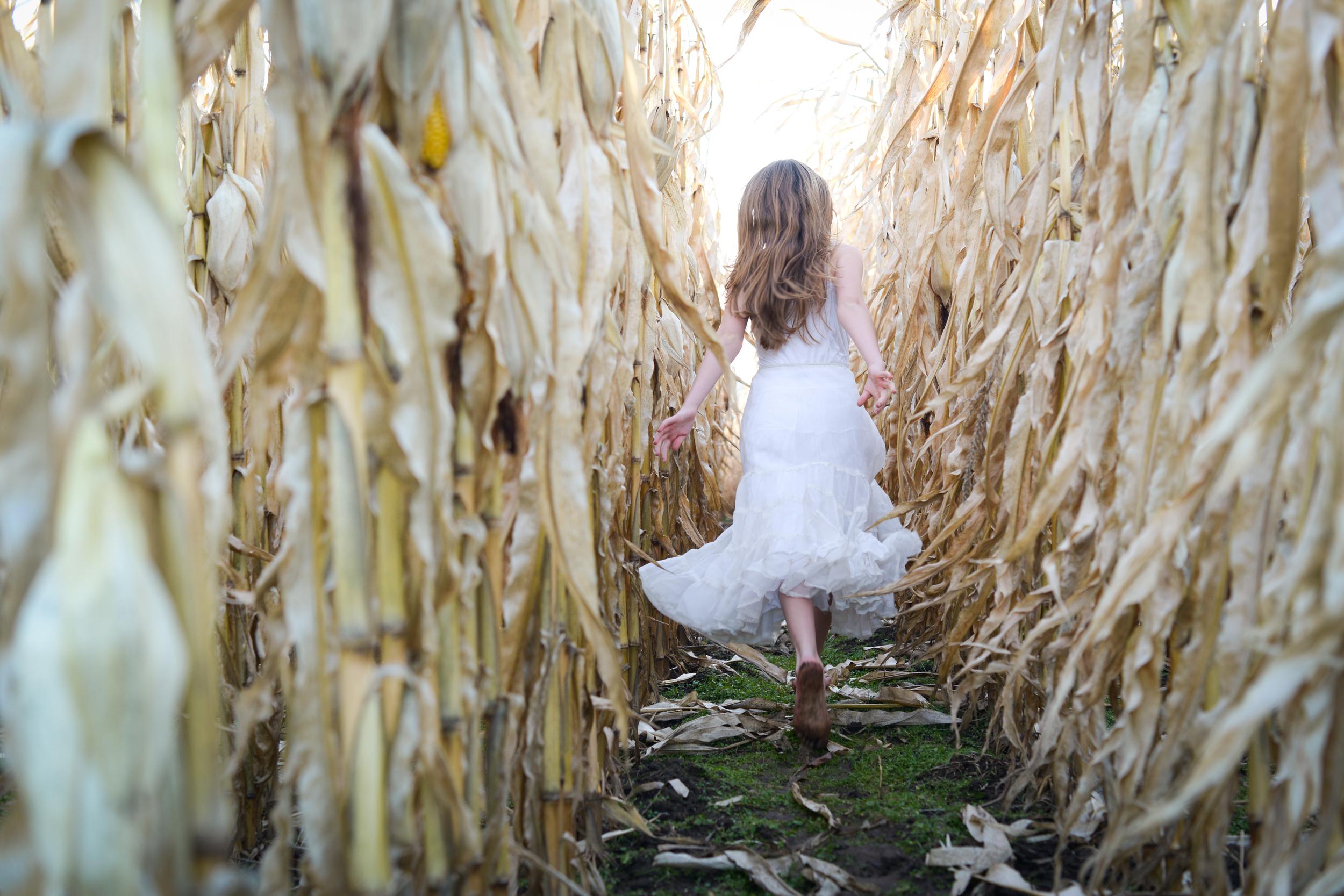 Girl Running Through Maize by Amherst Fine Art Photographer