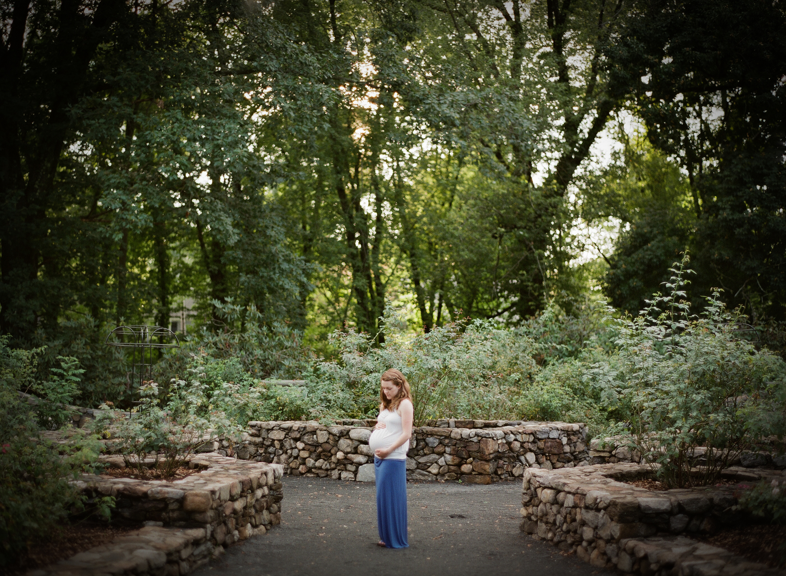 Elizabeth Park Photography