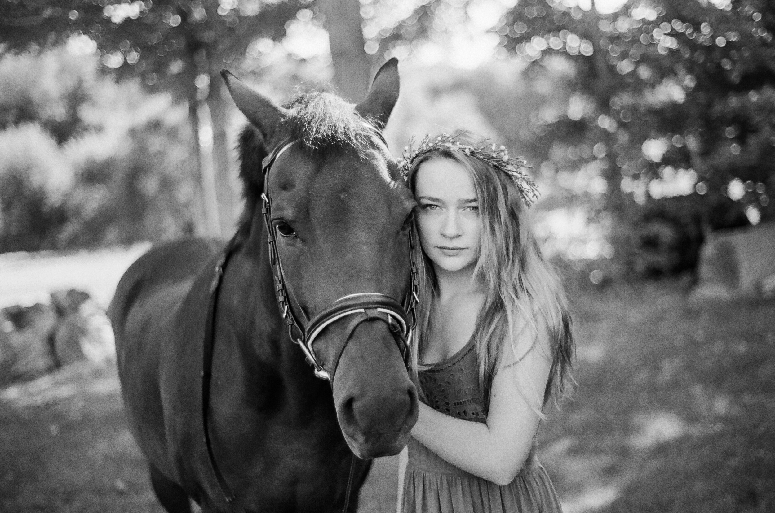 Equestrian Portrait Photographer in Amherst MA