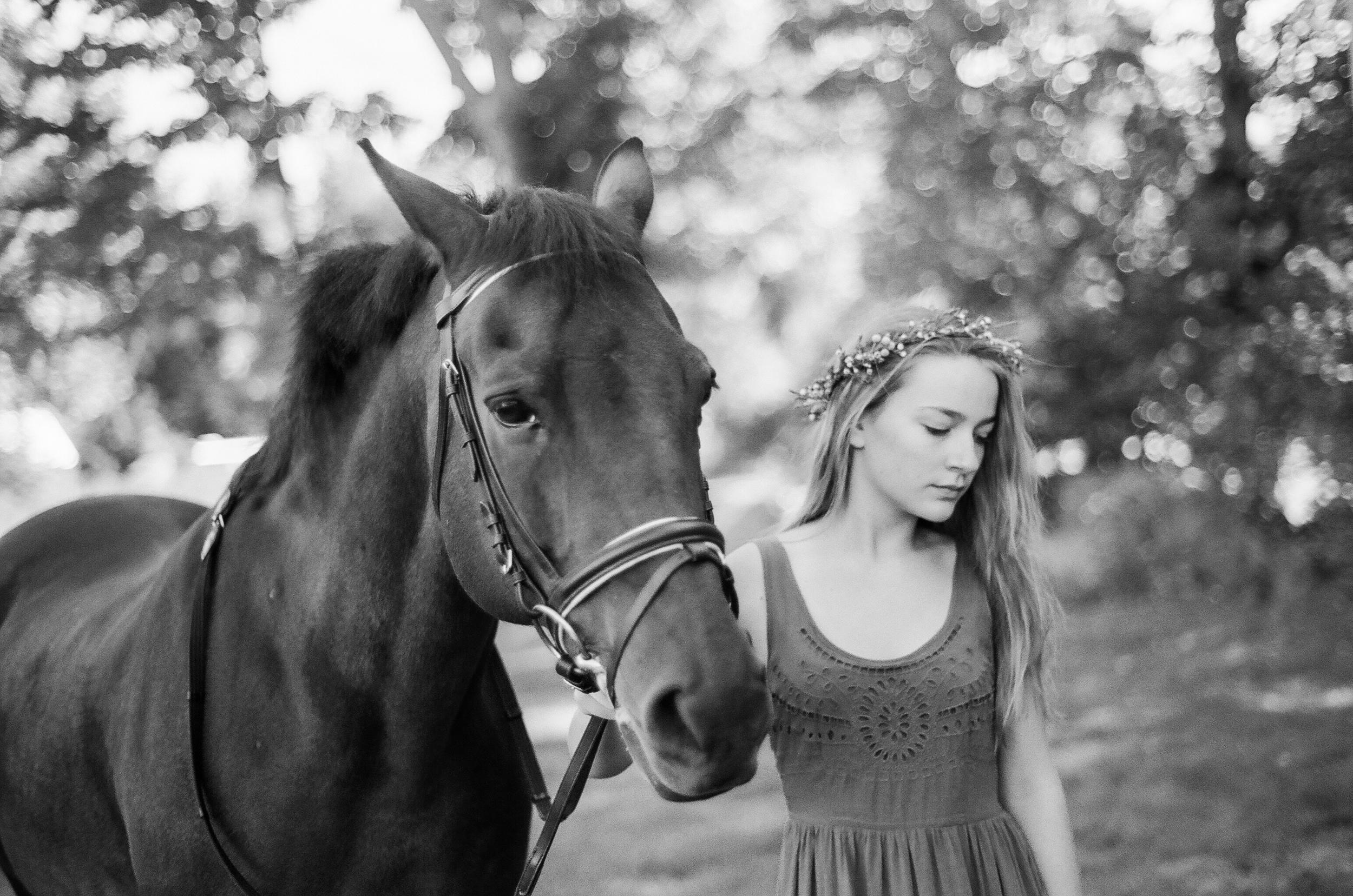 Equestrian Portraiture in Western MA