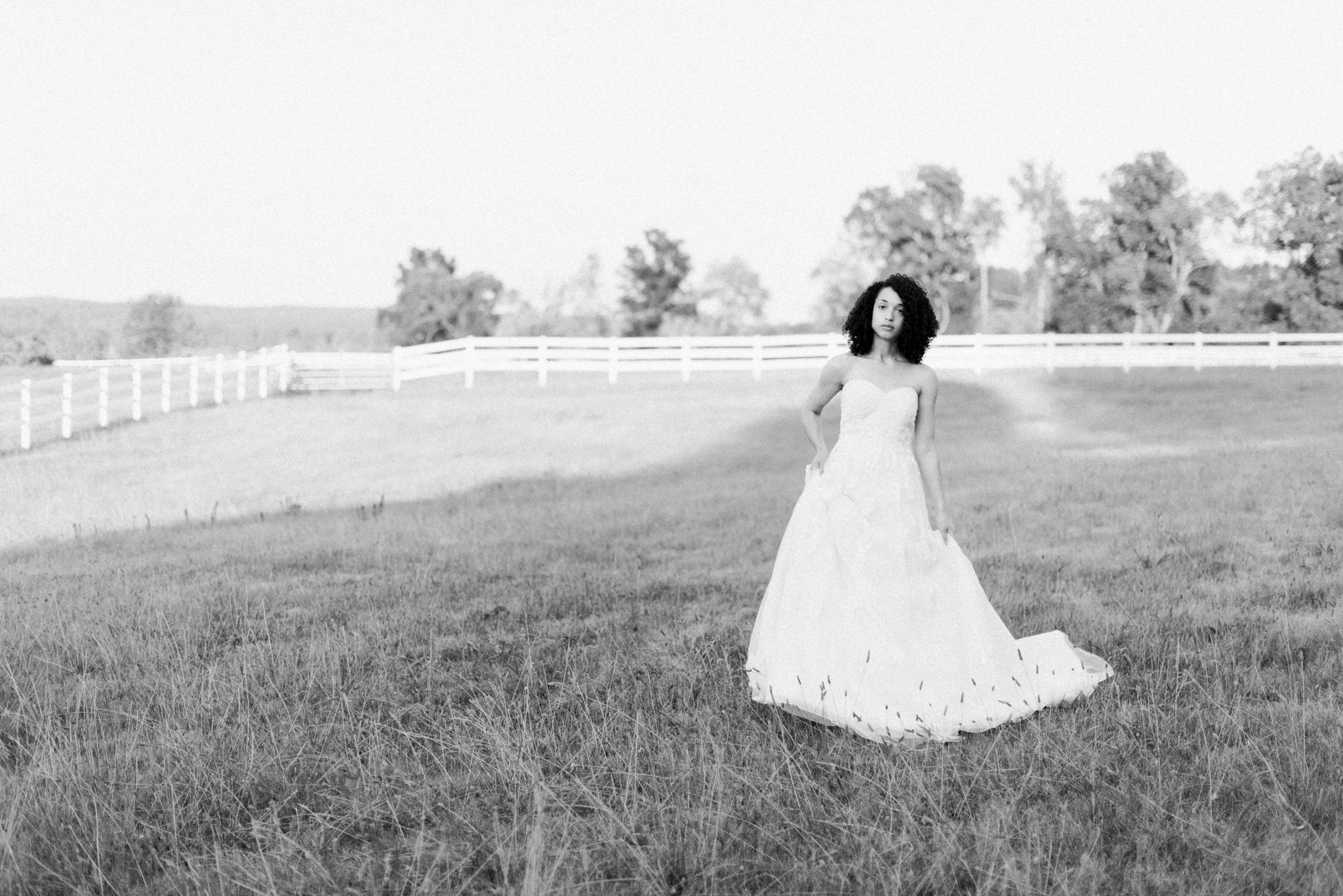 Elegant Rustic Weddings