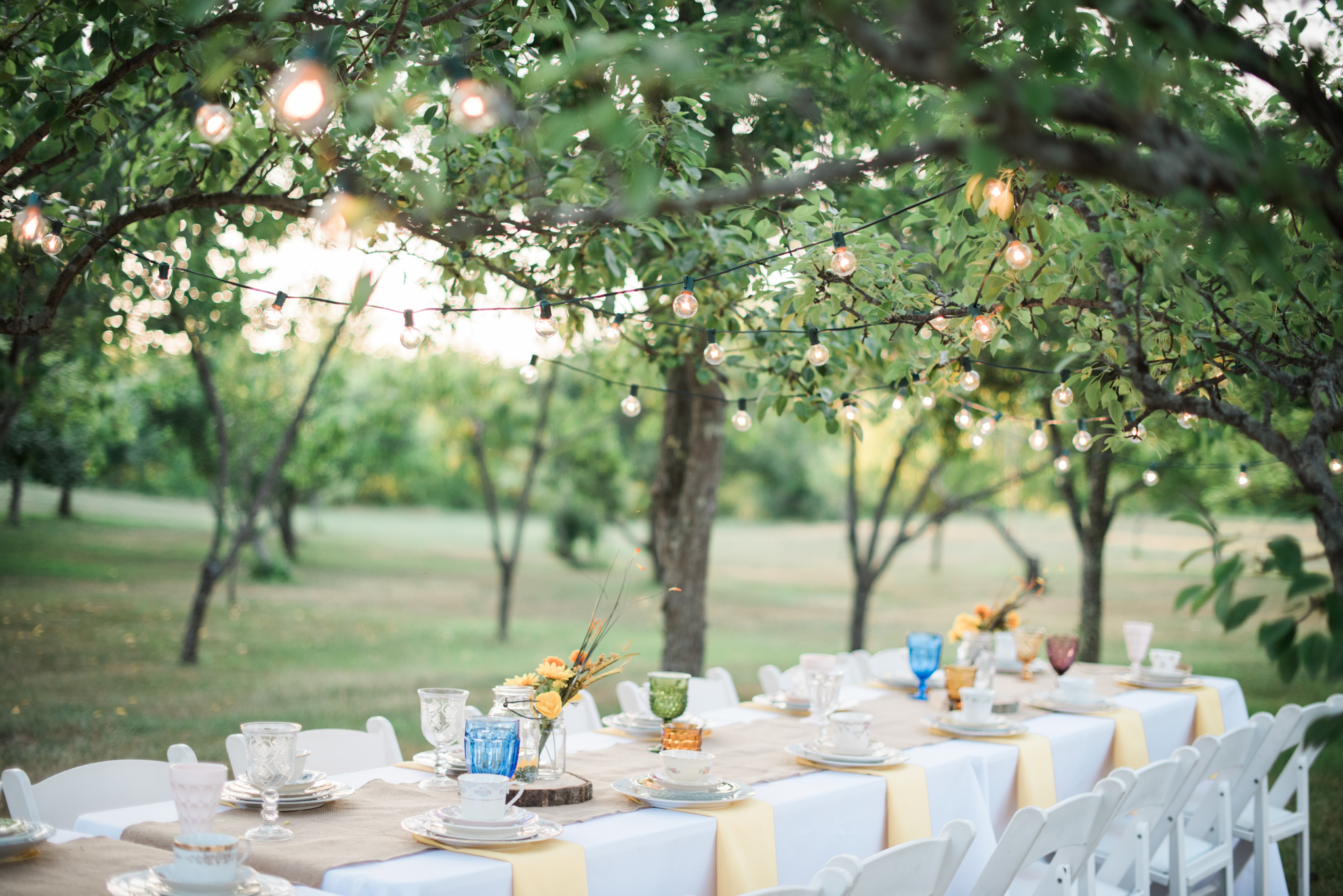 Misty Meadows Farm Wedding