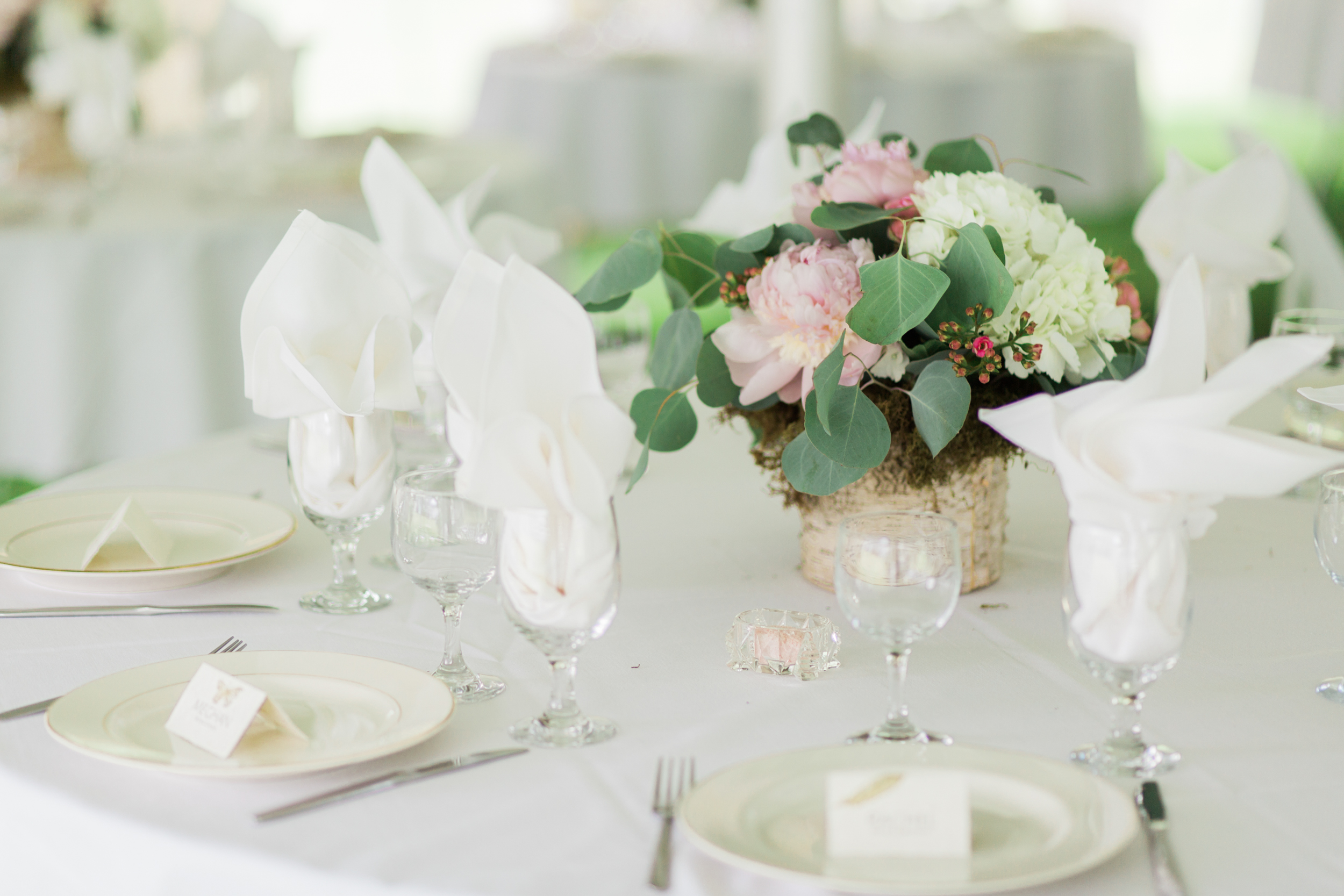 Tented Wedding Receptions in New England
