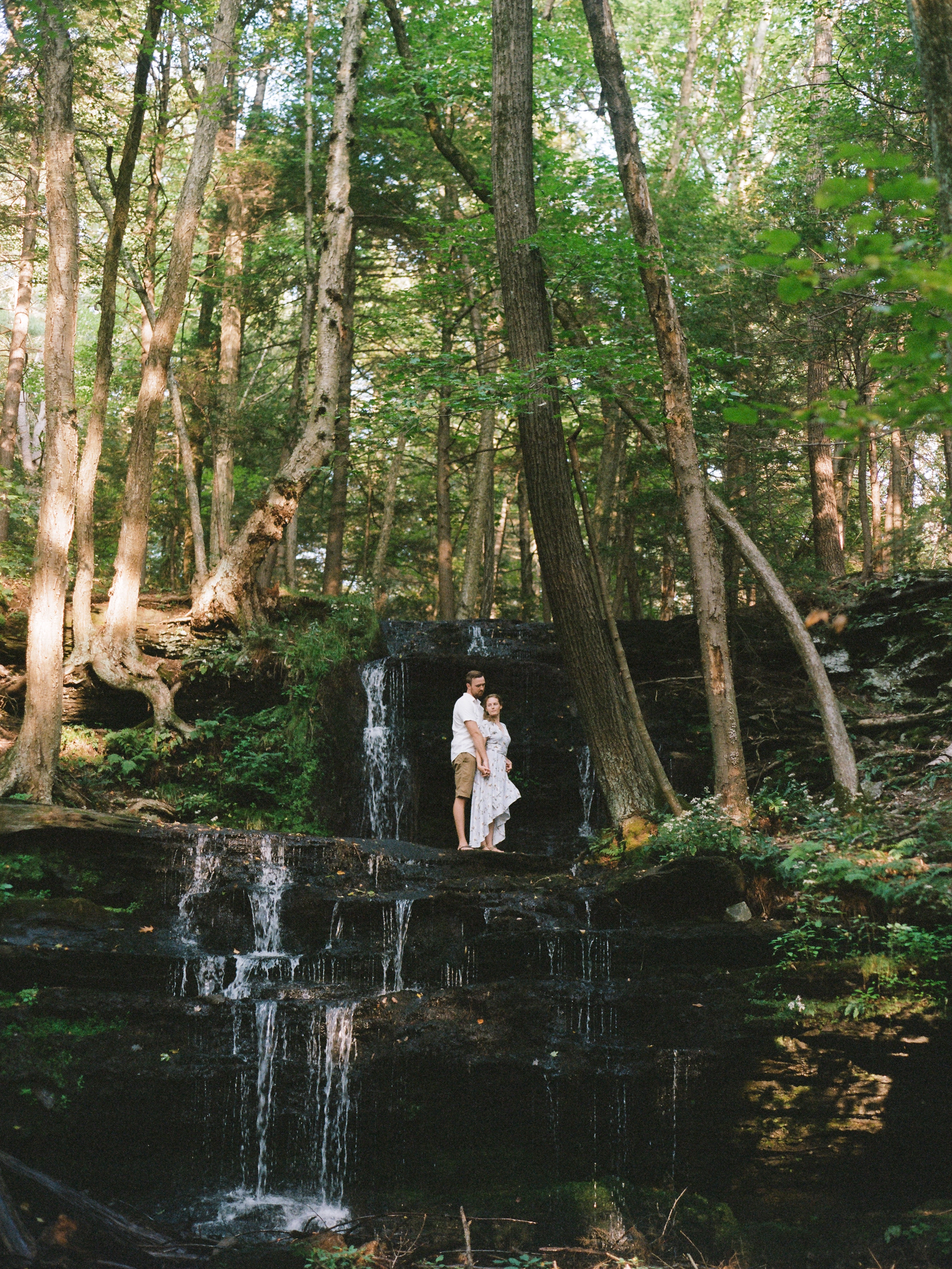New England Forest Engagement Session