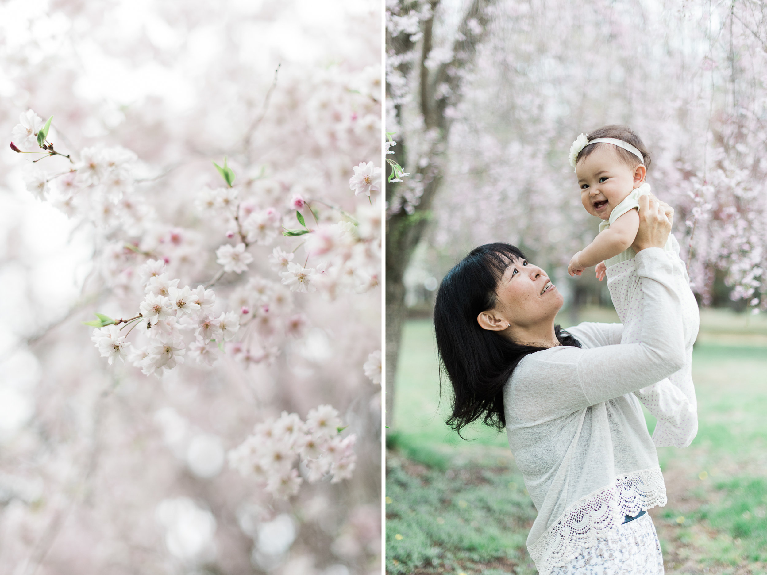 Baby Photography in Deerfield MA