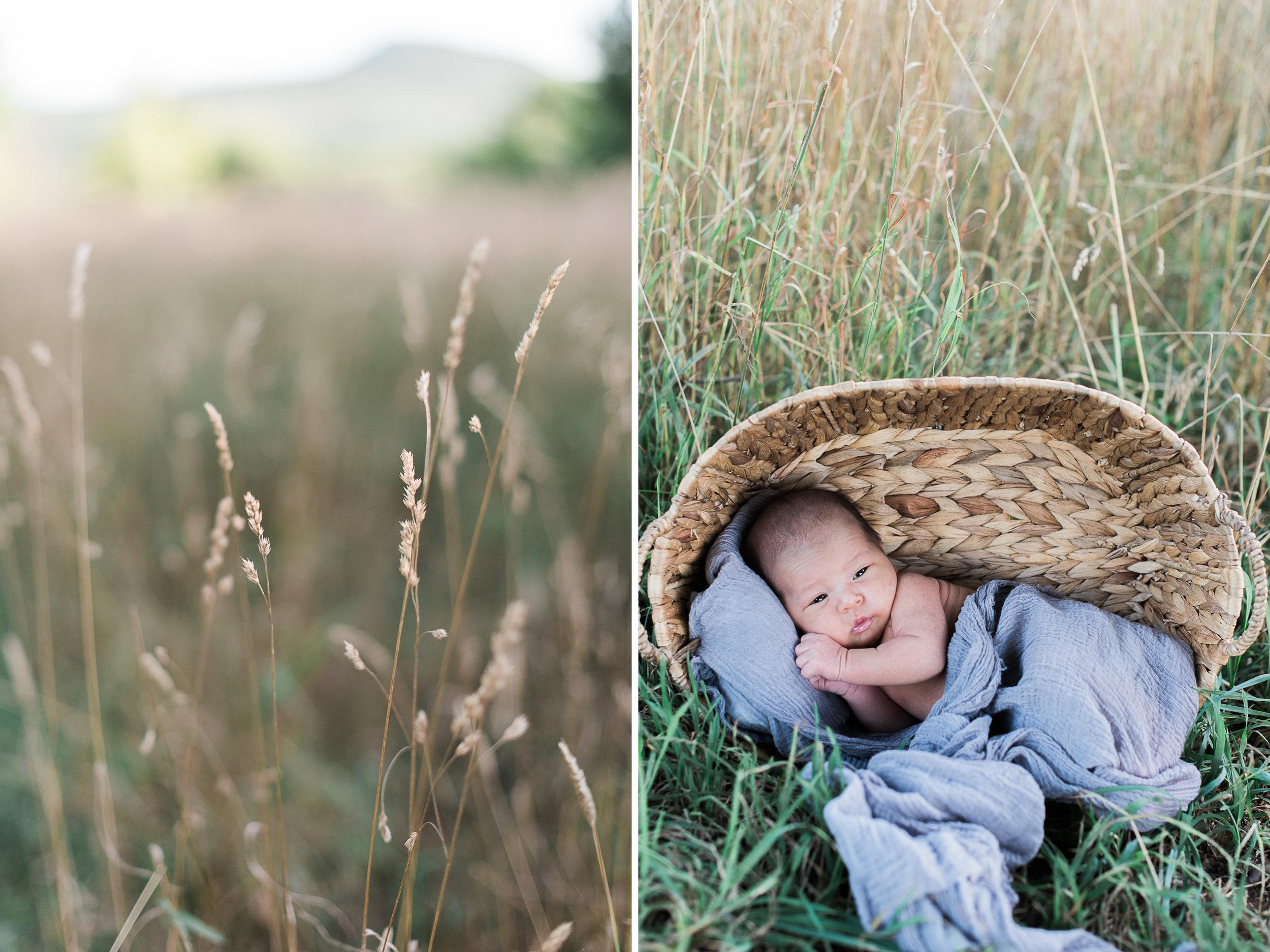 Amherst Mass newborn photographers