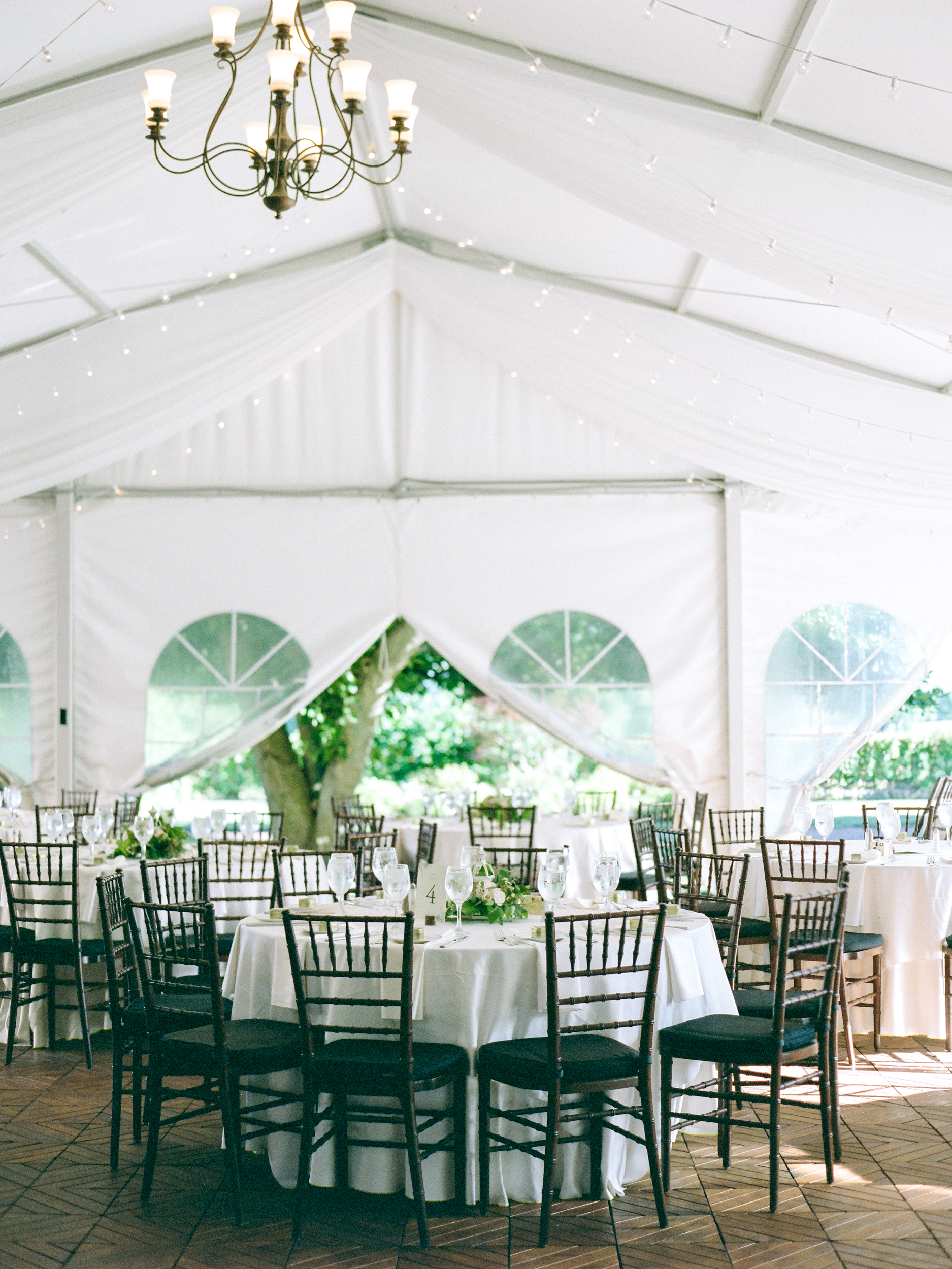 Tented Backyard Weddings in Amherst MA